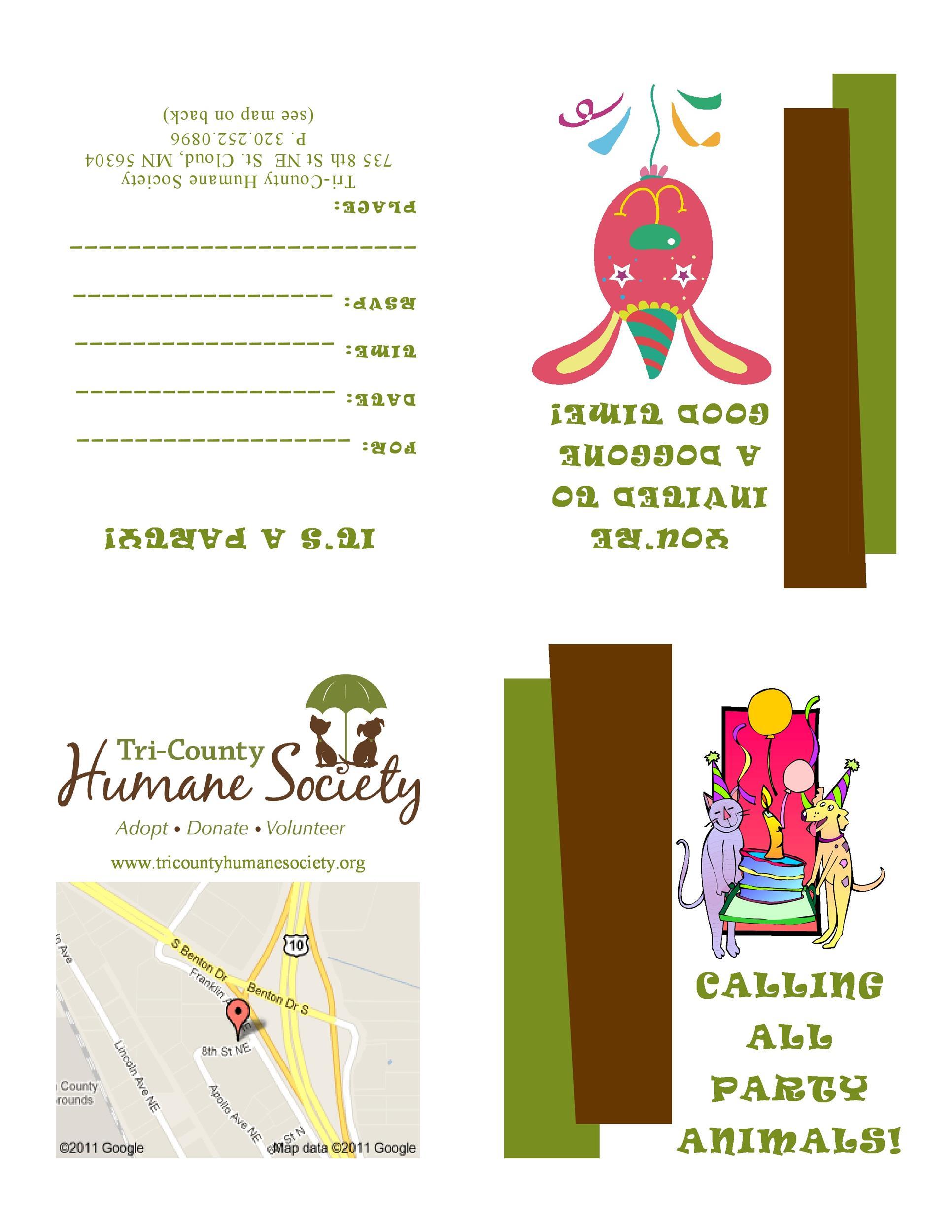 Free Birthday Invitation Template 05