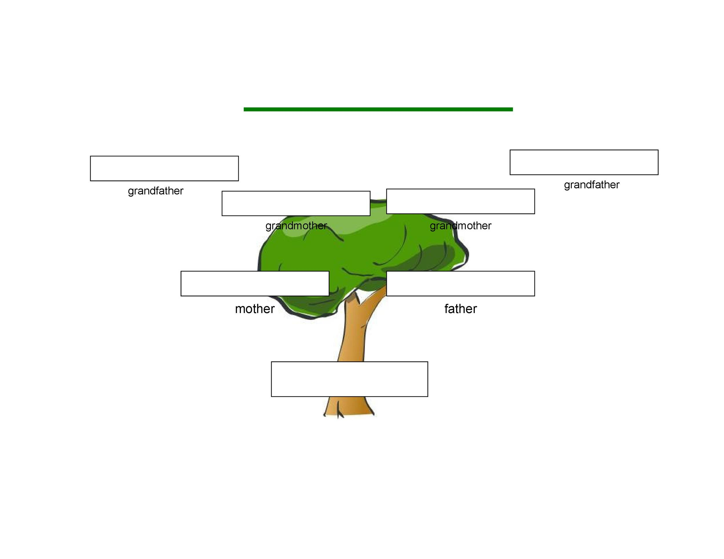 Free Genogram Template 05