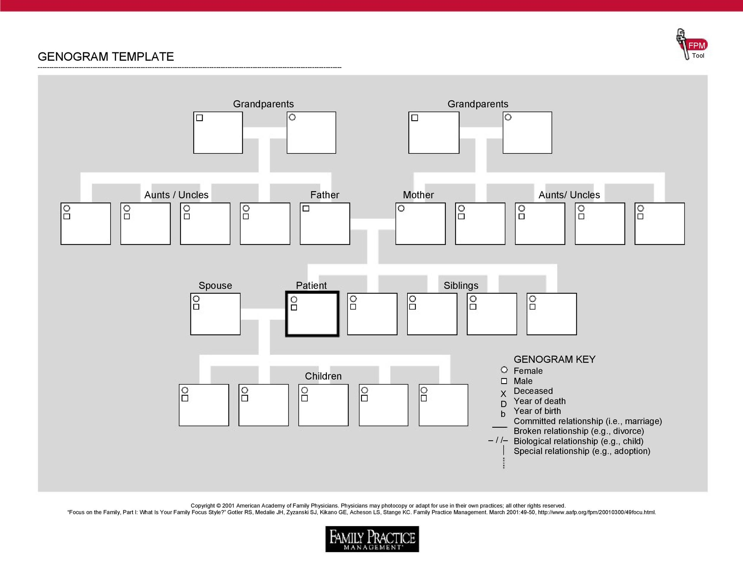 Free Genogram Template 10