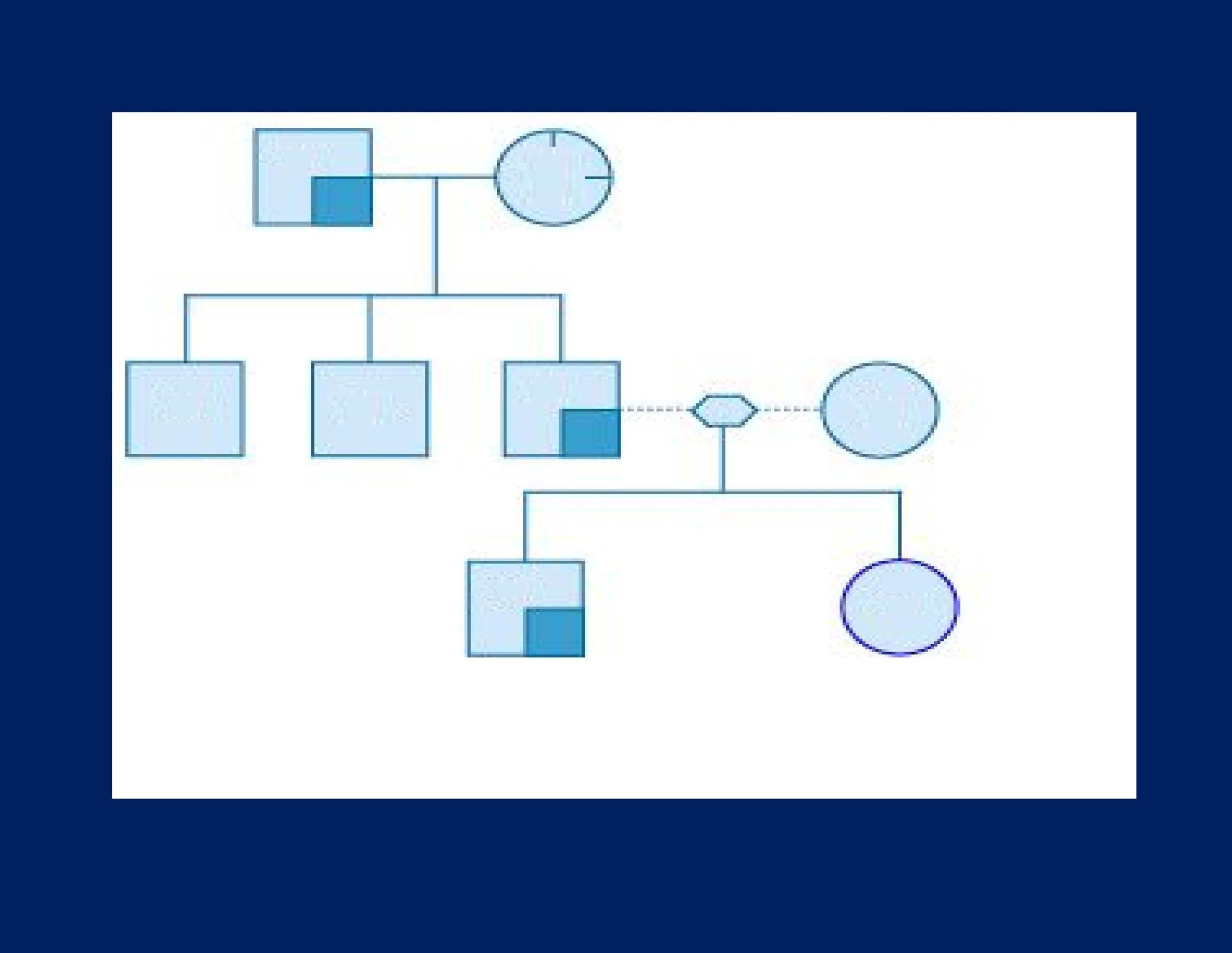 Free Genogram Template 24