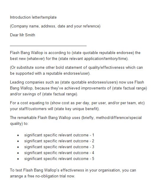 Free Letter of Introduction Template 16