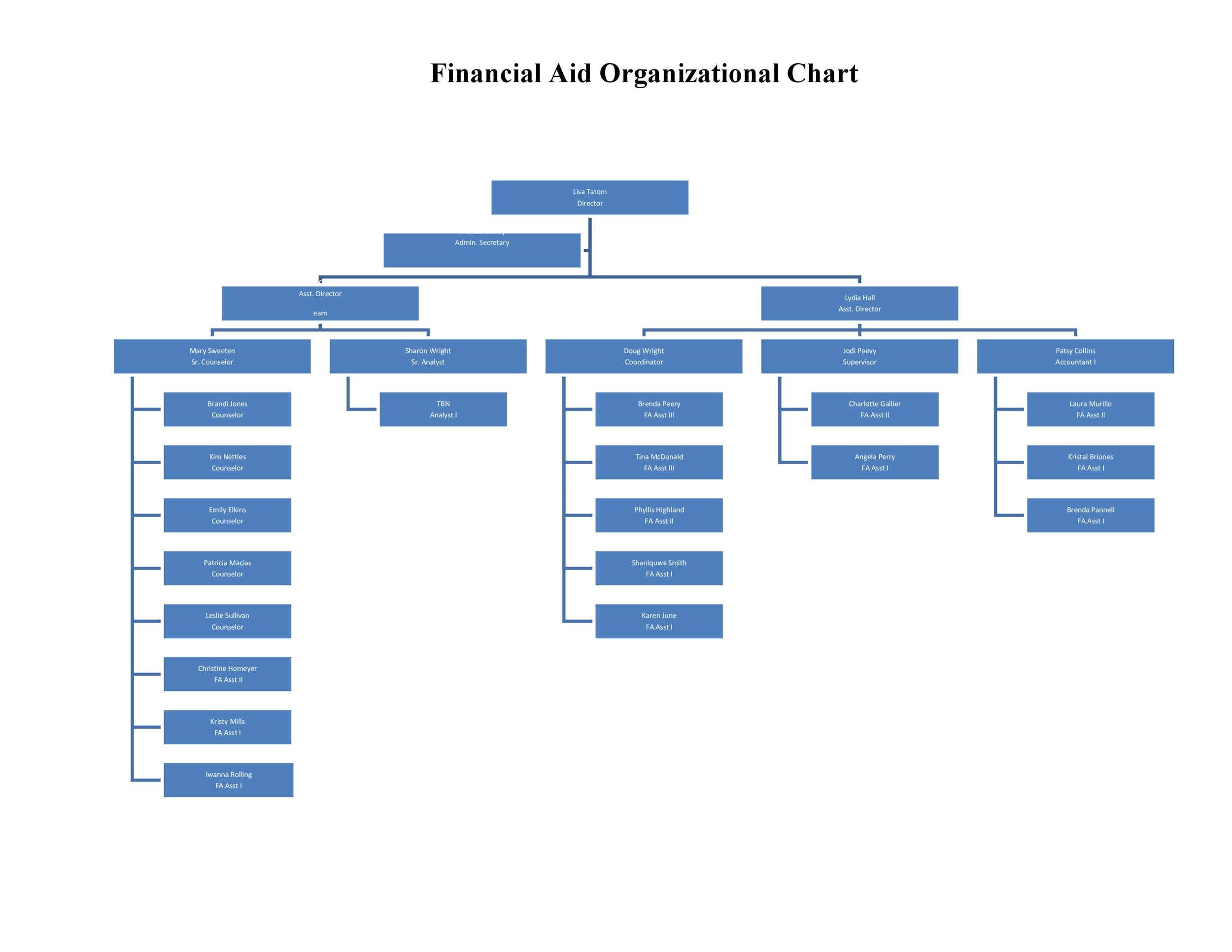 High Quality Printable Organizational Chart Template 01