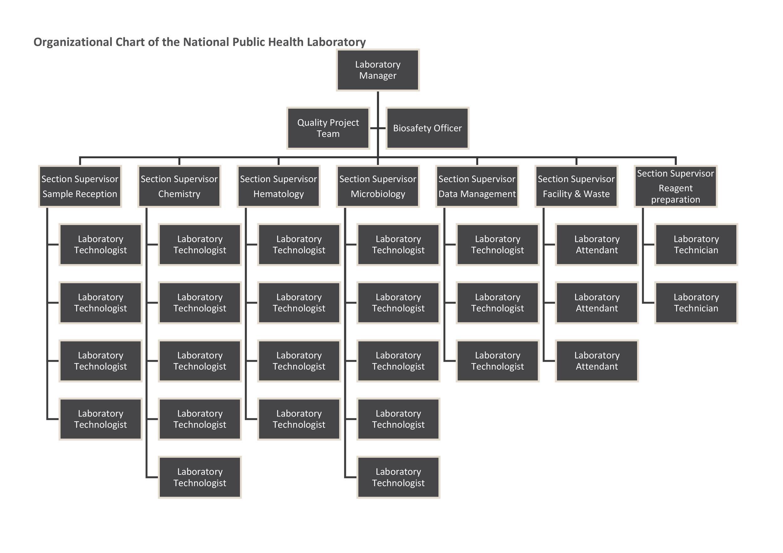 Free Organizational Chart Template 10