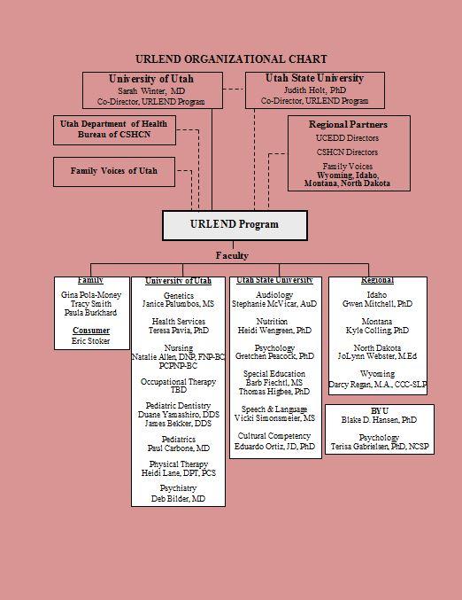 Free Organizational Chart Template 13