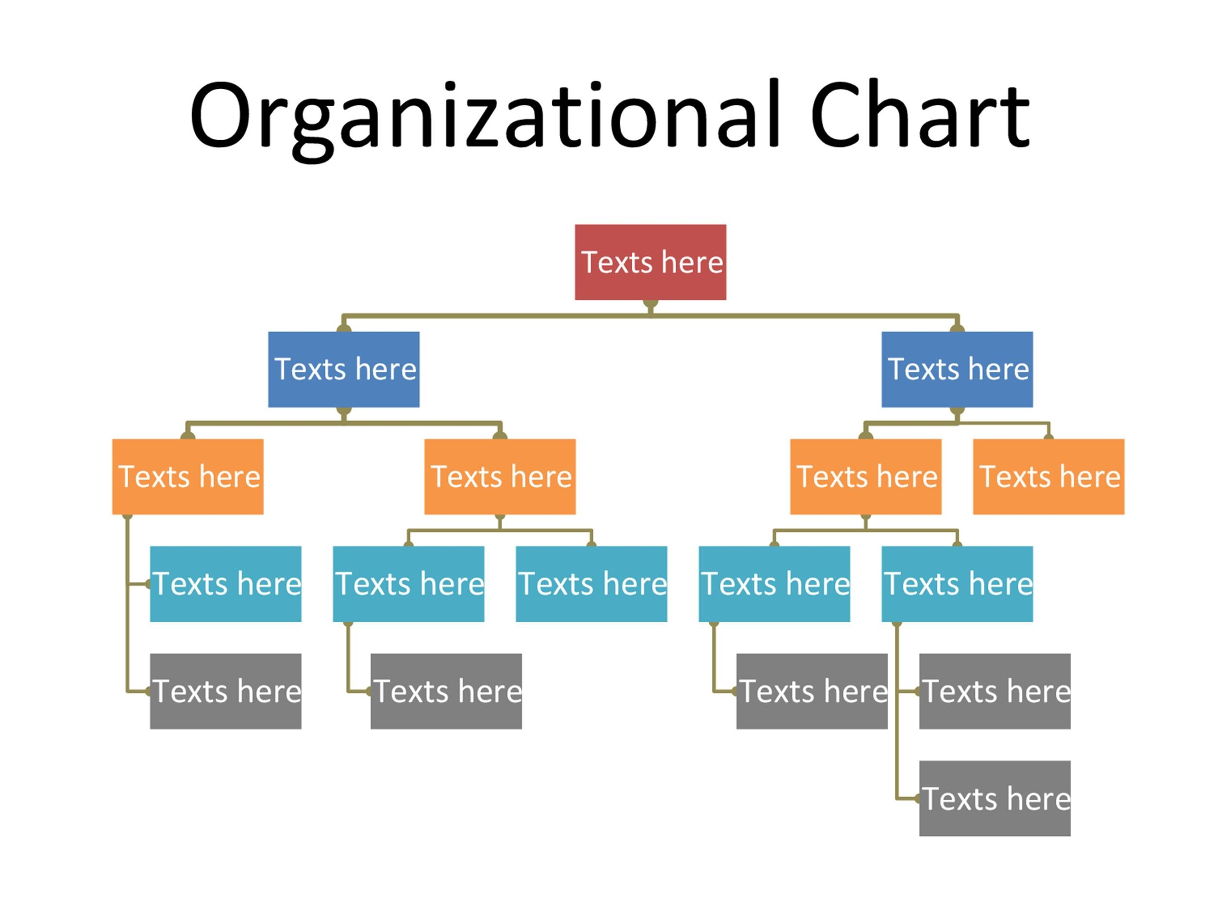 word organization chart template