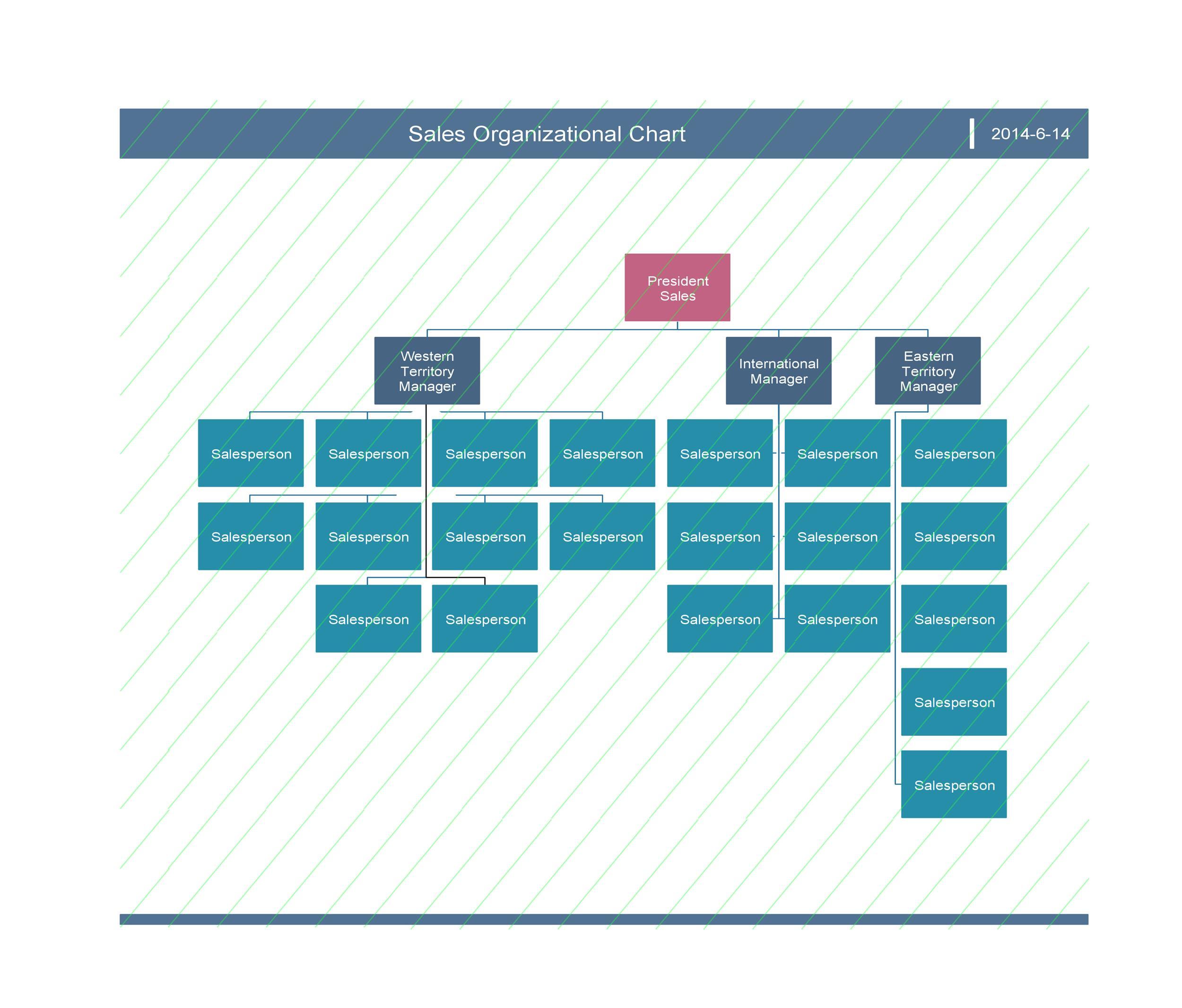 Free Organizational Chart  Template 33