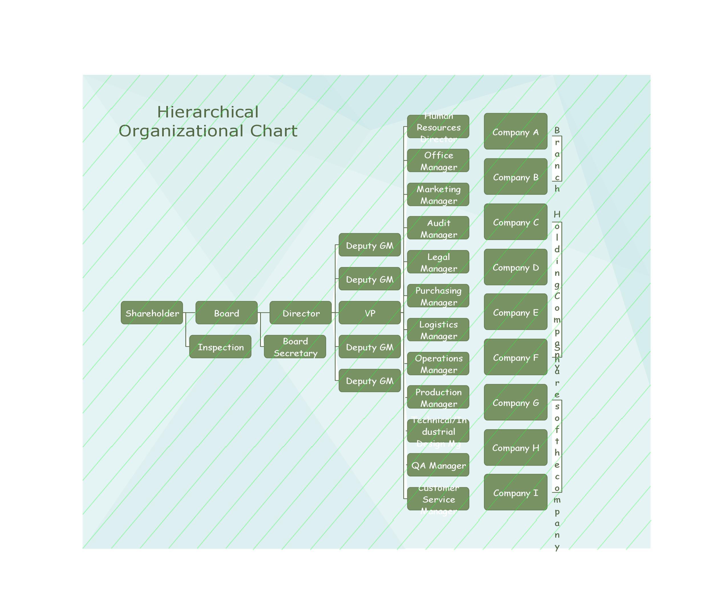 Free Organizational Chart  Template 36