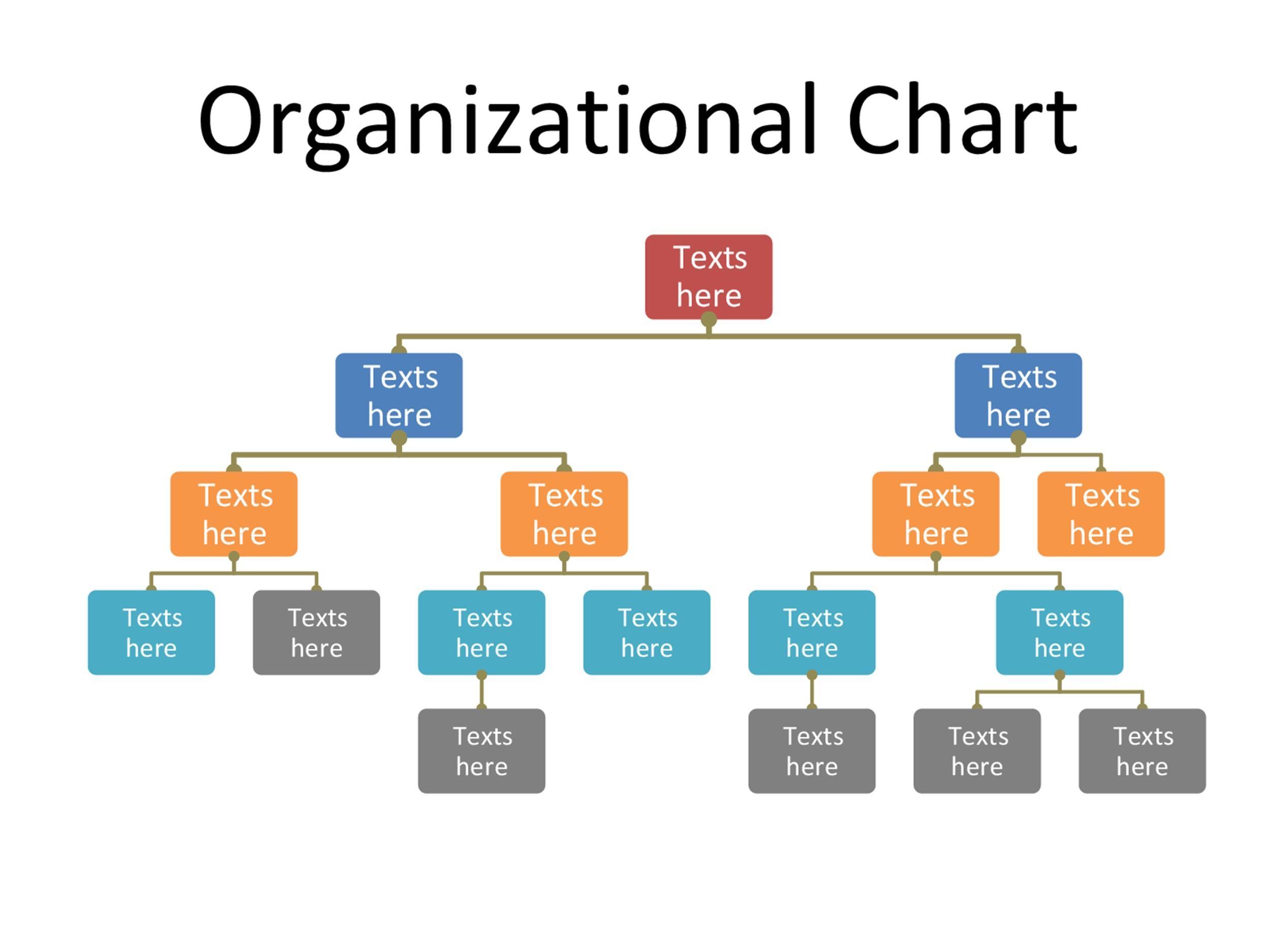 Free Organizational Chart  Template 37