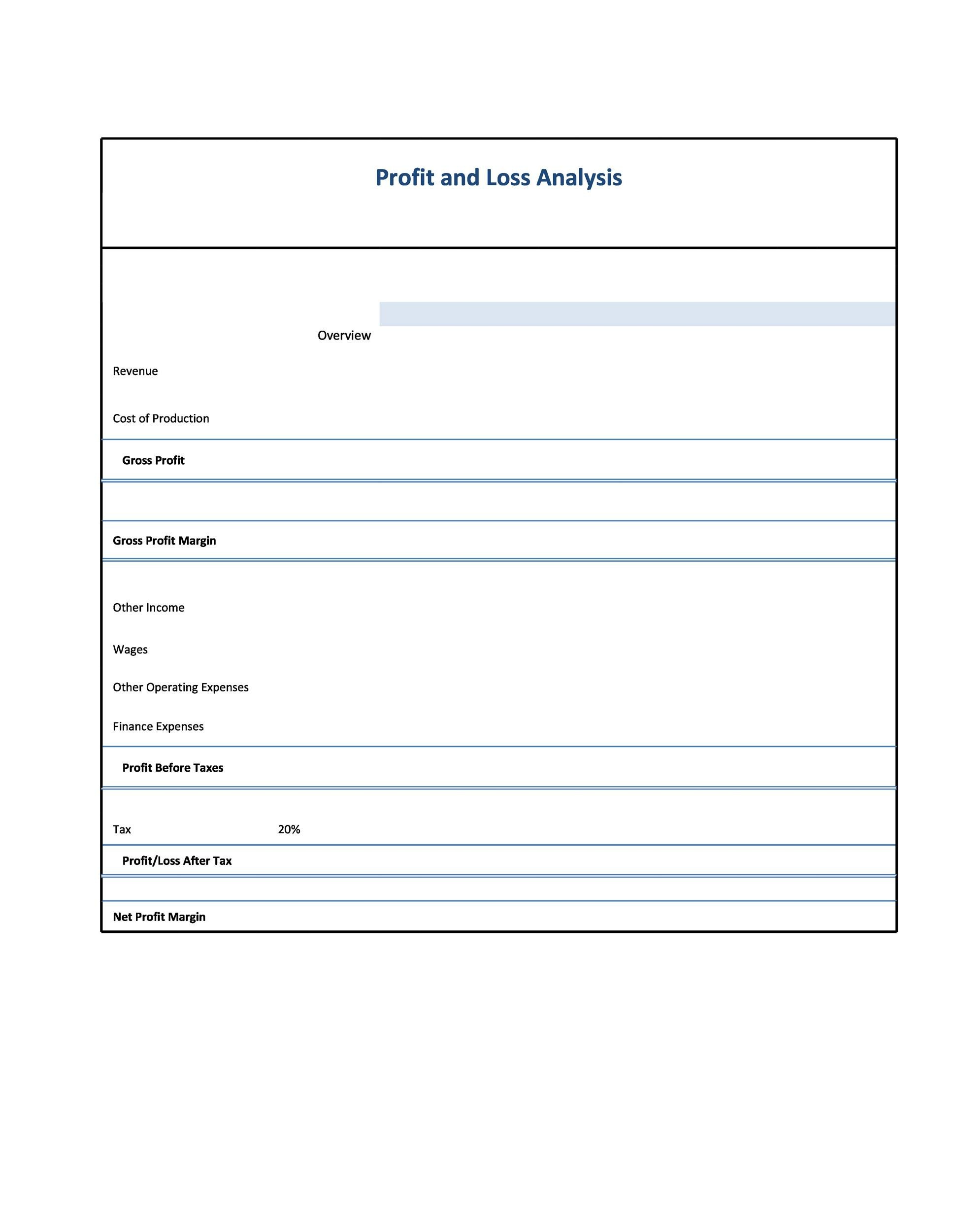 Free Profit and Loss Statement Template 13