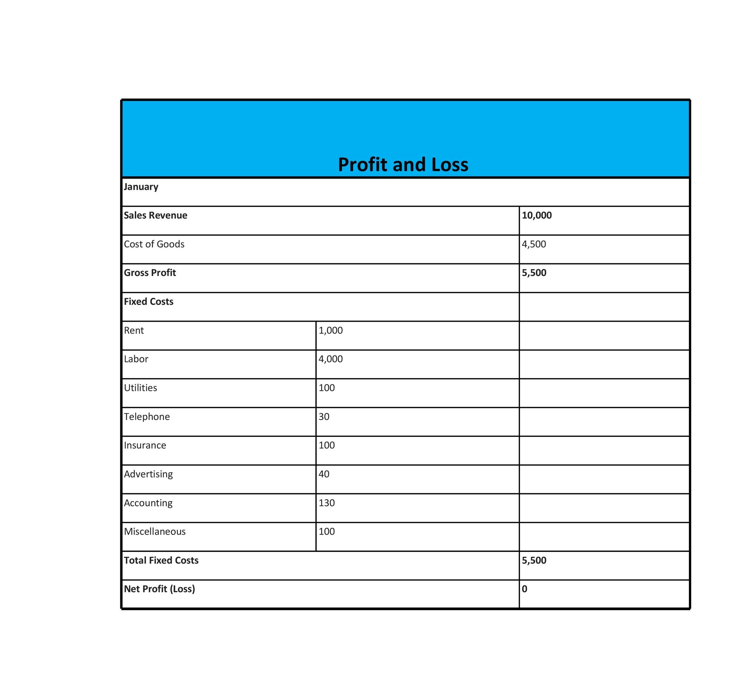 Free Profit and Loss Statement Template 29