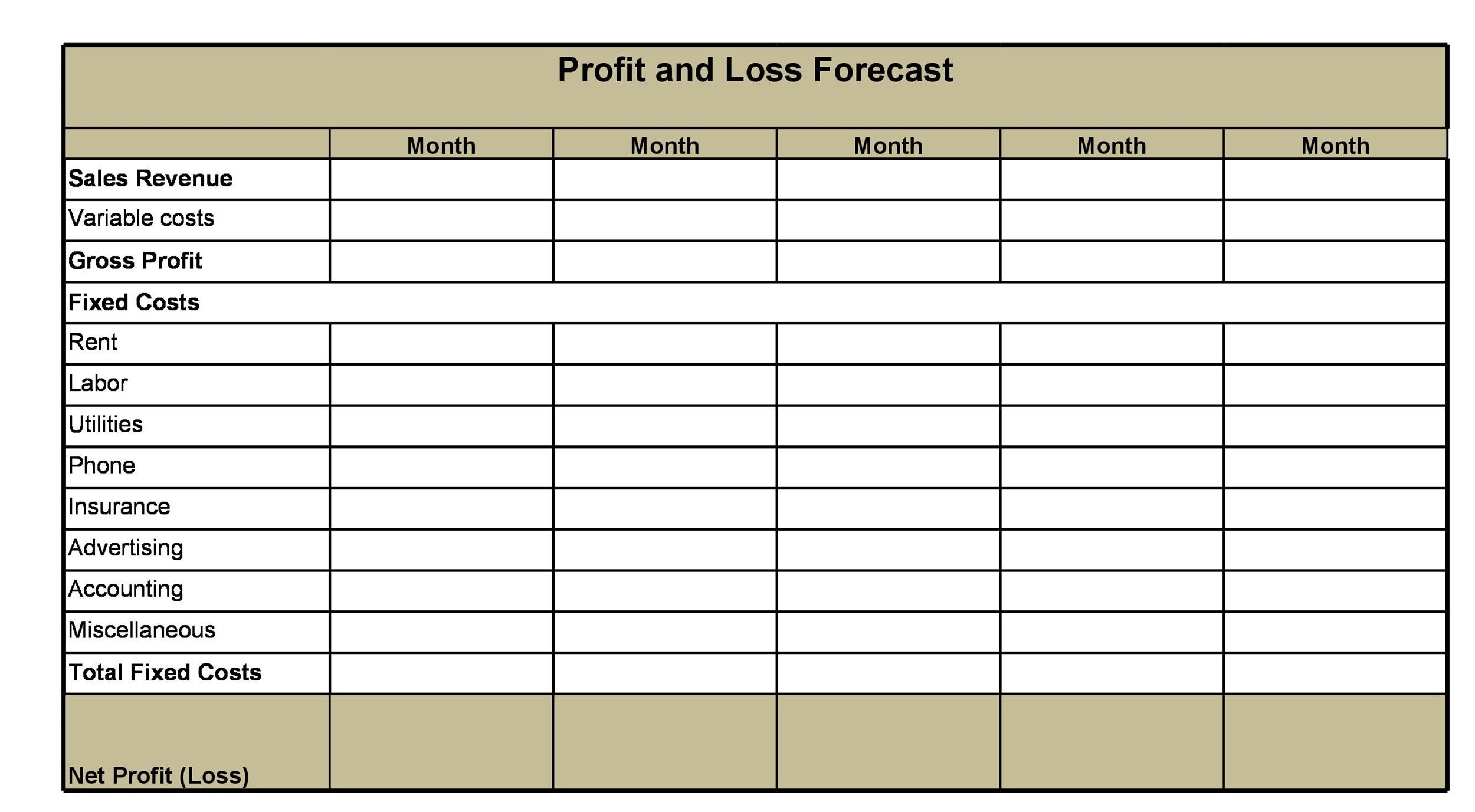 Template  Profit And Loss Projection Template