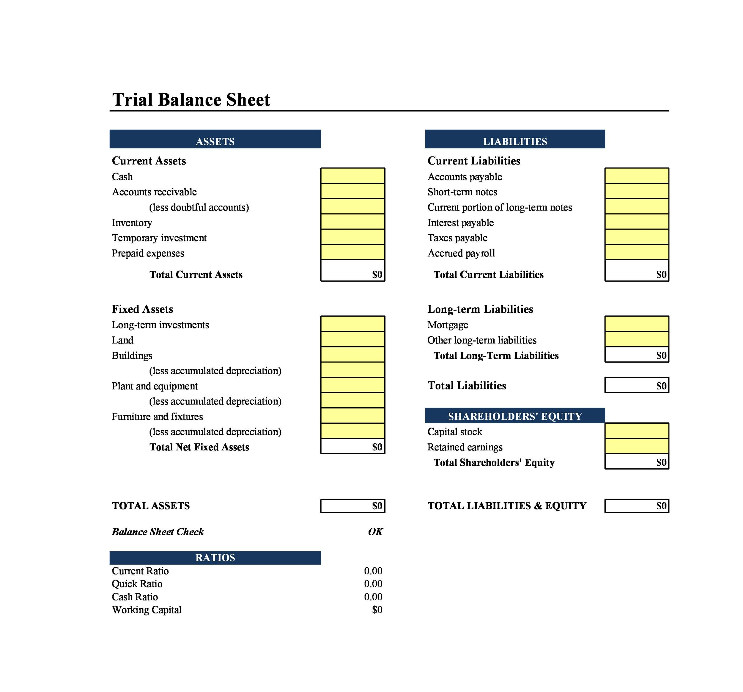 Free Balance Sheet Template 20
