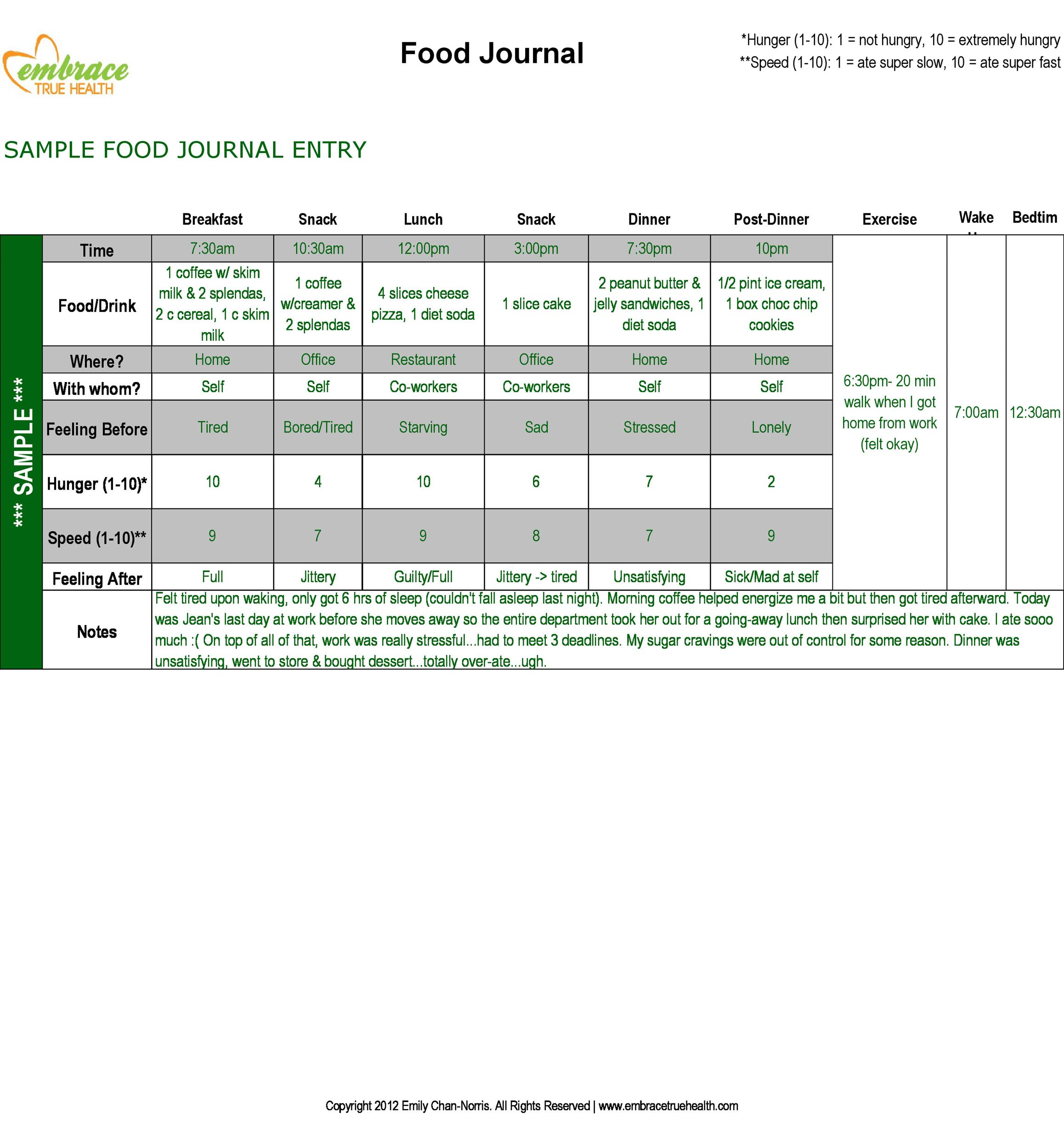 sample food diary template