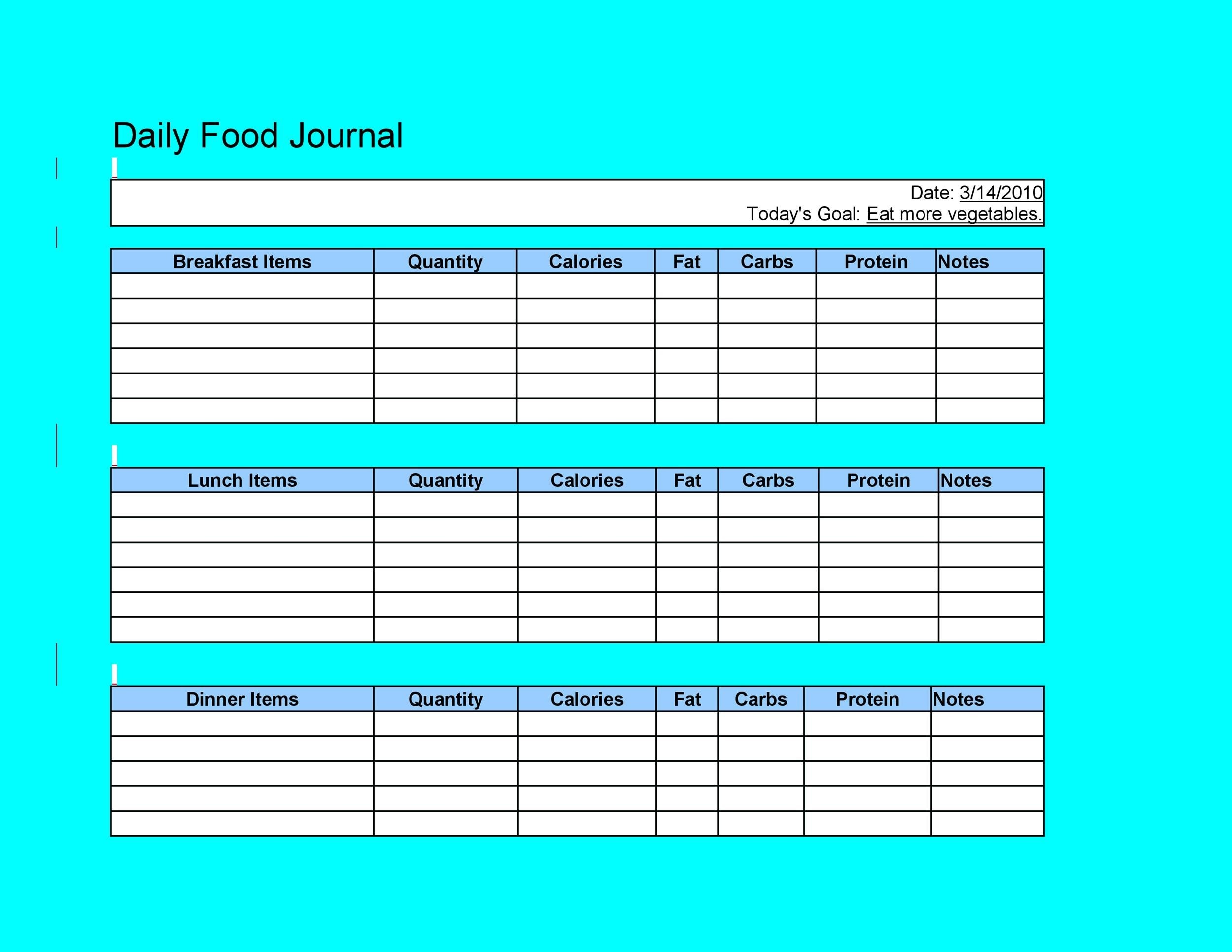Free Food Diary Template 21