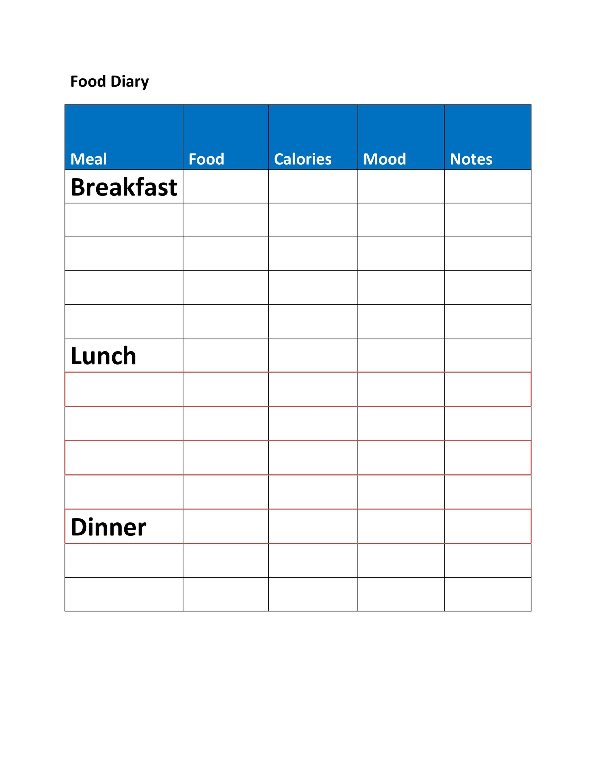 Food Diary Template 34
