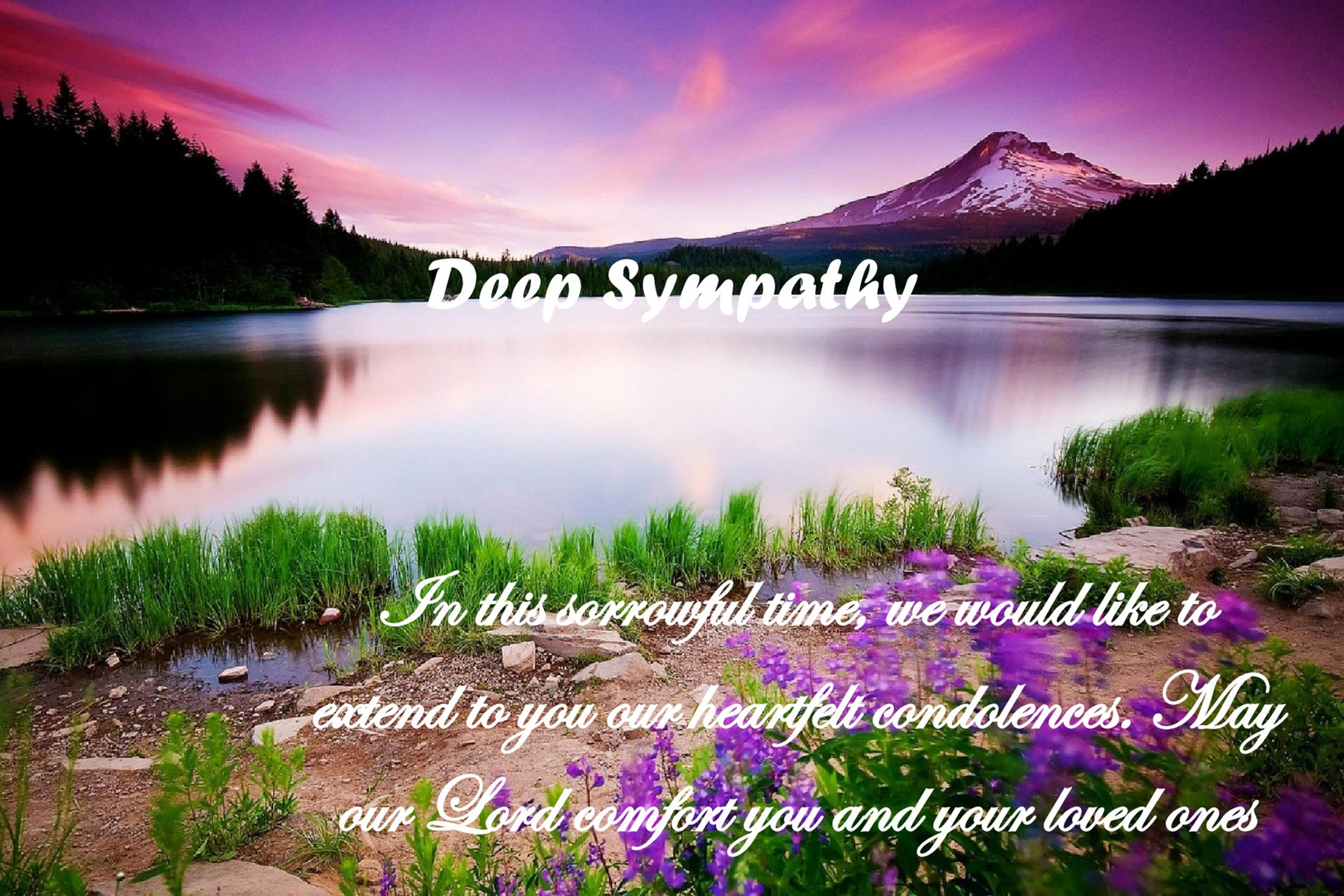 Sympathy Message Template 04