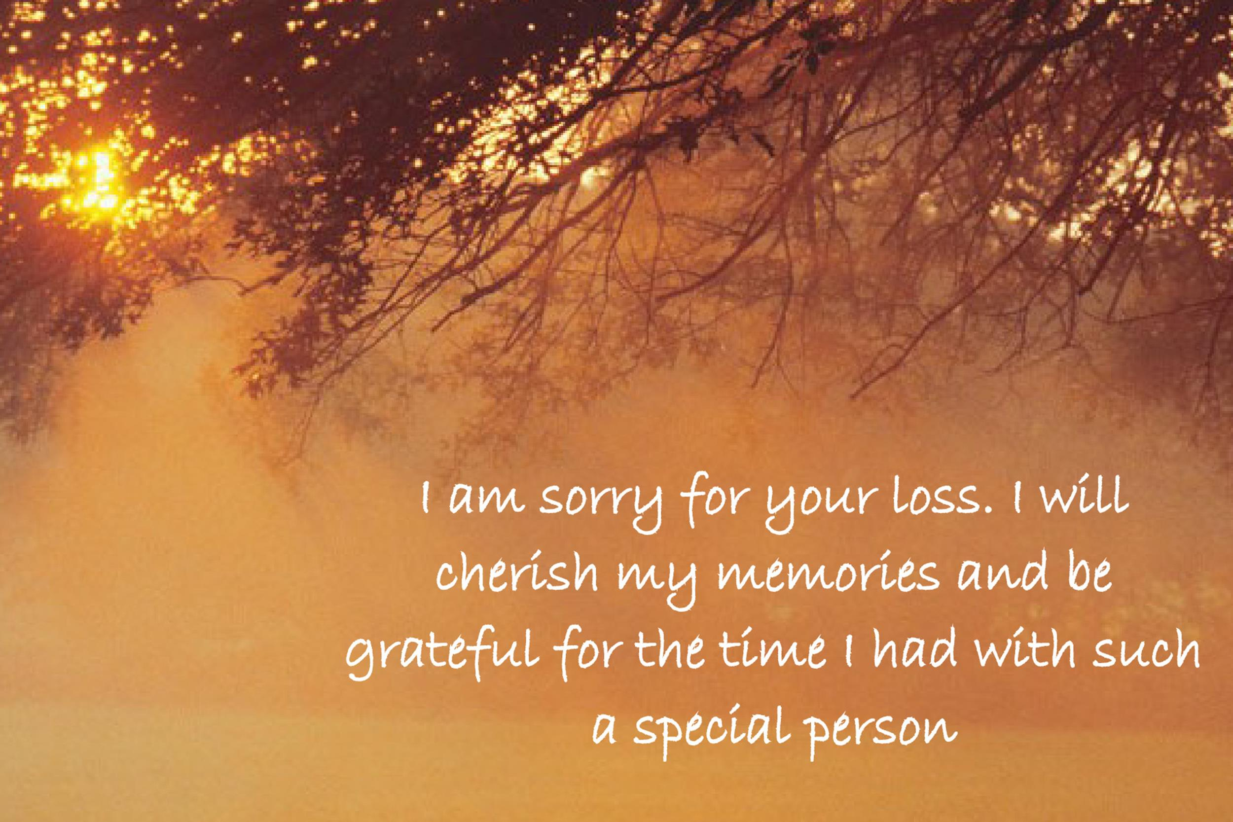 Free Sympathy Message Template 08