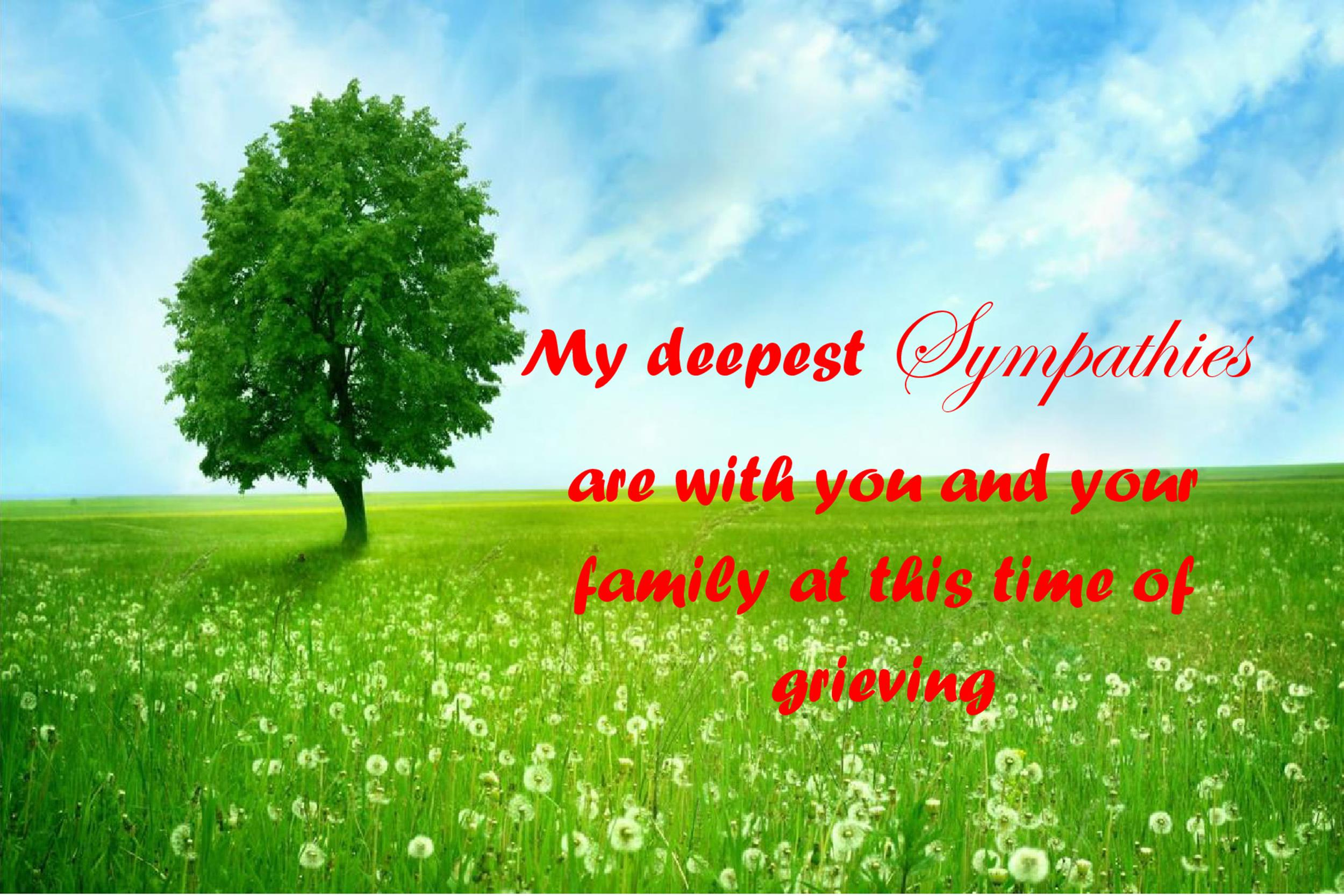 Free Sympathy Message Template 14