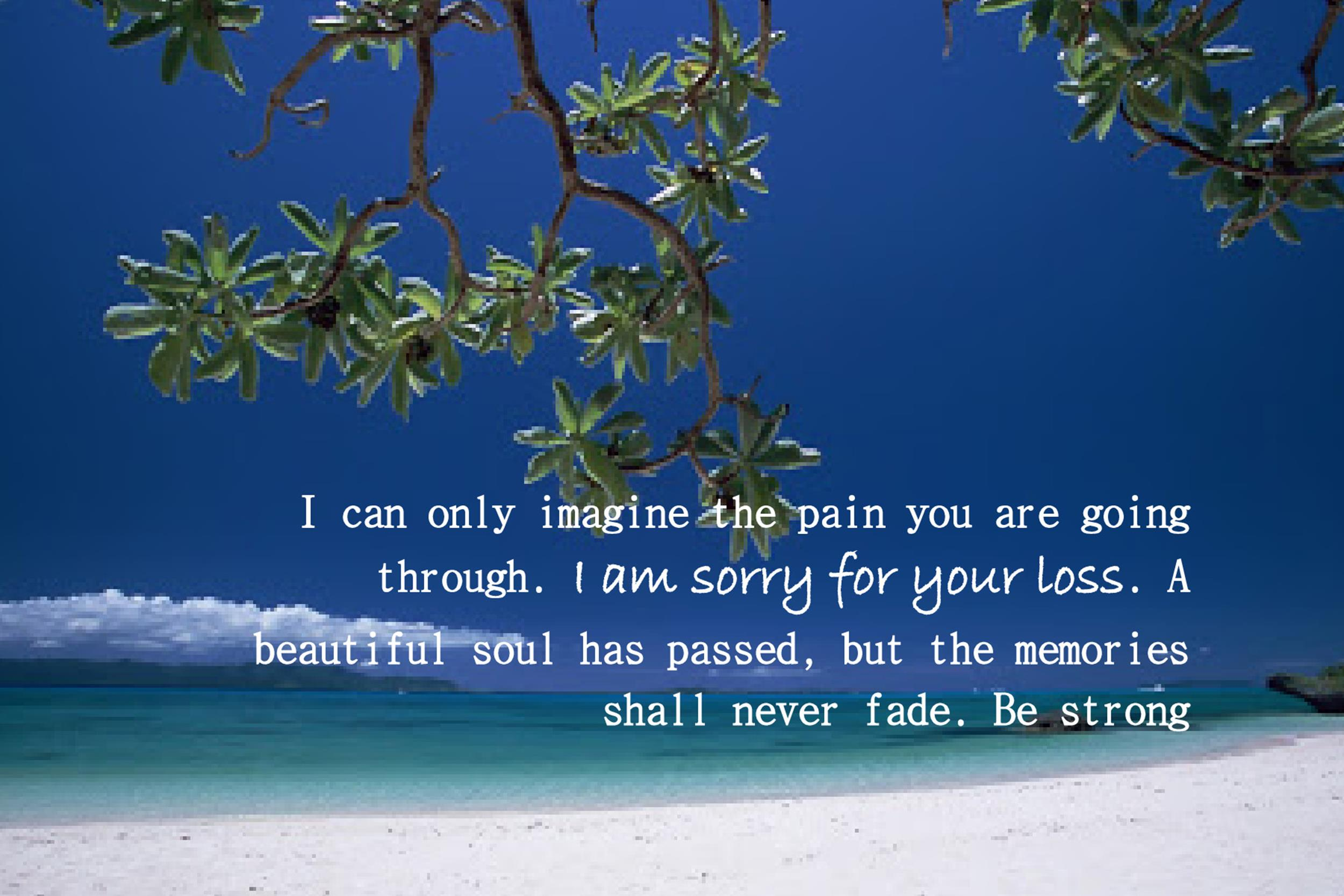 Free Sympathy Message Template 24