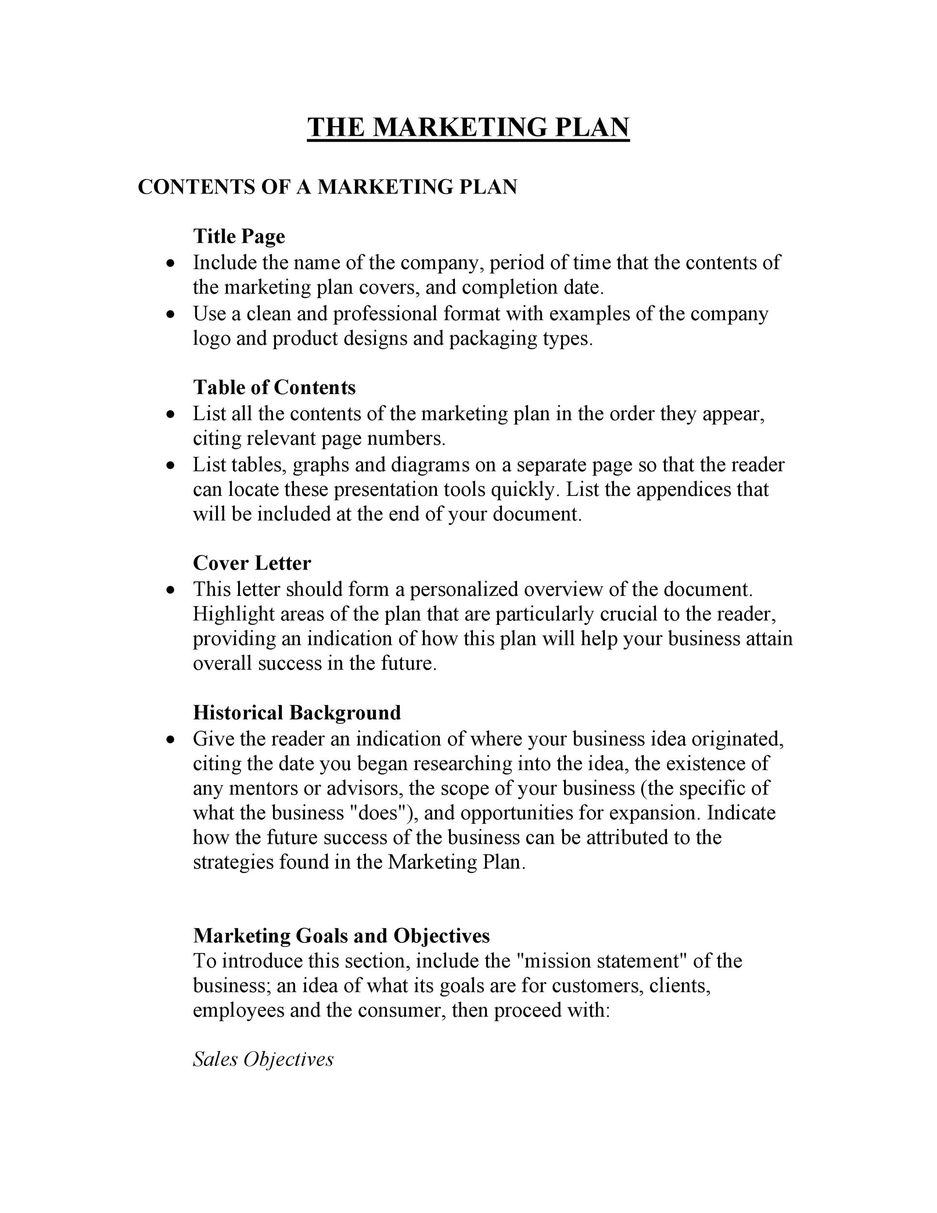 Free Marketing Plan Template 17