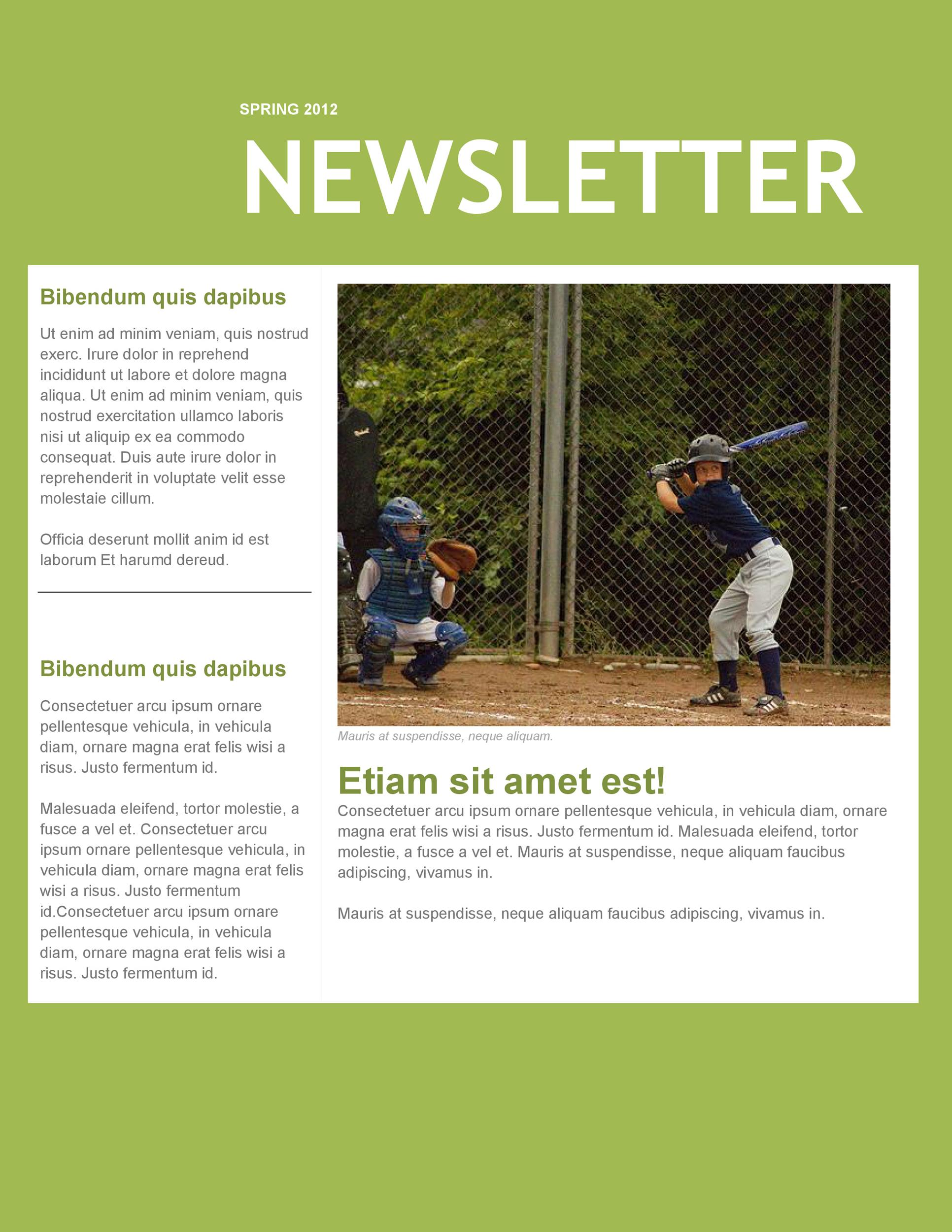 Free Newsletter Template 14