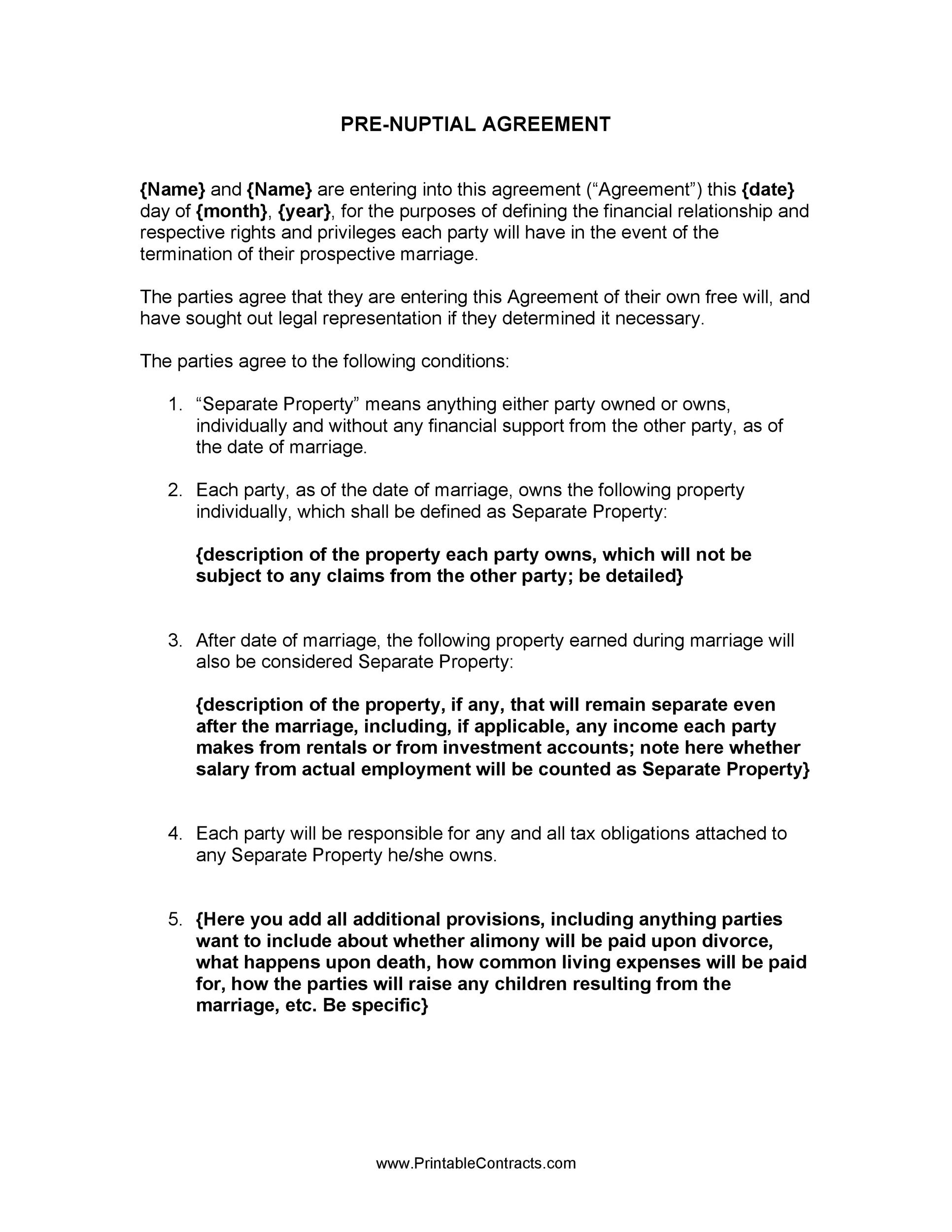 Free Prenuptial Agreement Template 30