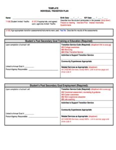 Transition Plan Template 24