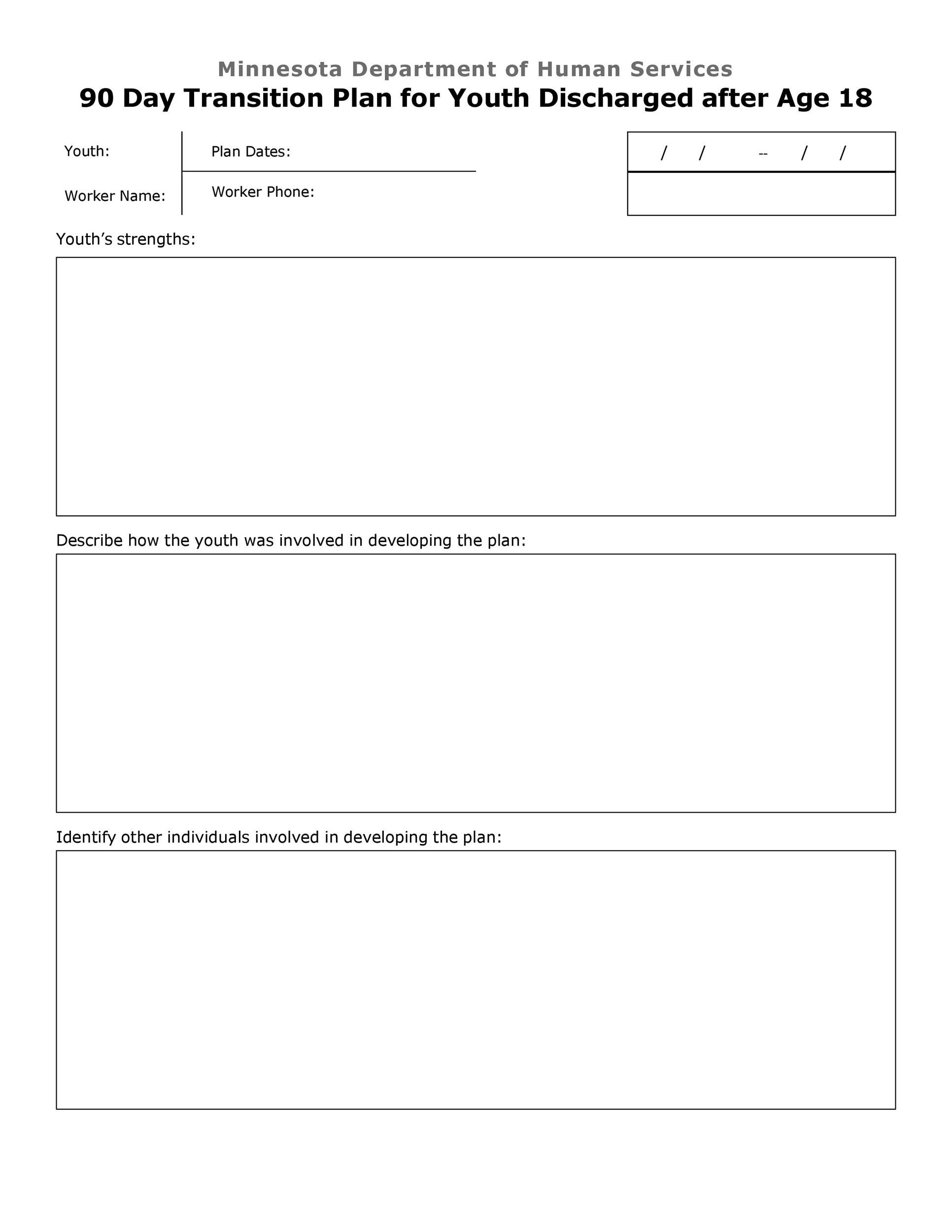Free Transition Plan Template 27
