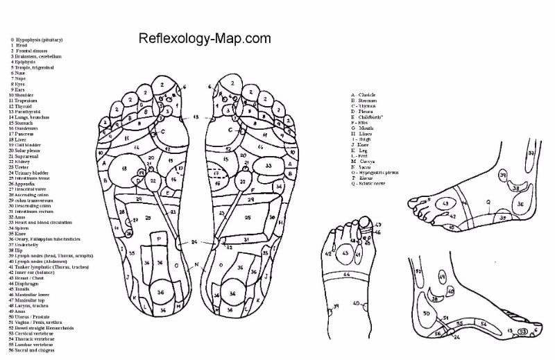 Free foot reflexology chart 06