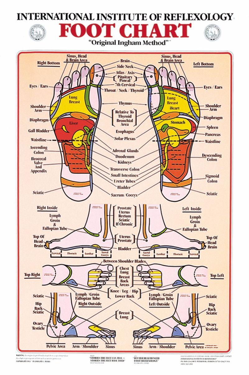 Free foot reflexology chart 10