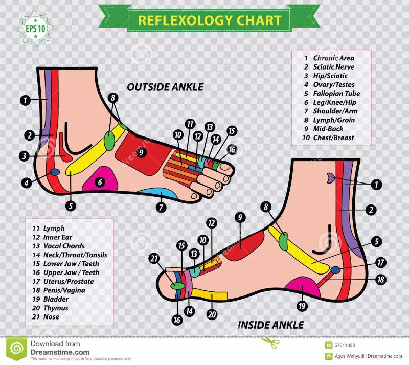 Free foot reflexology chart 13