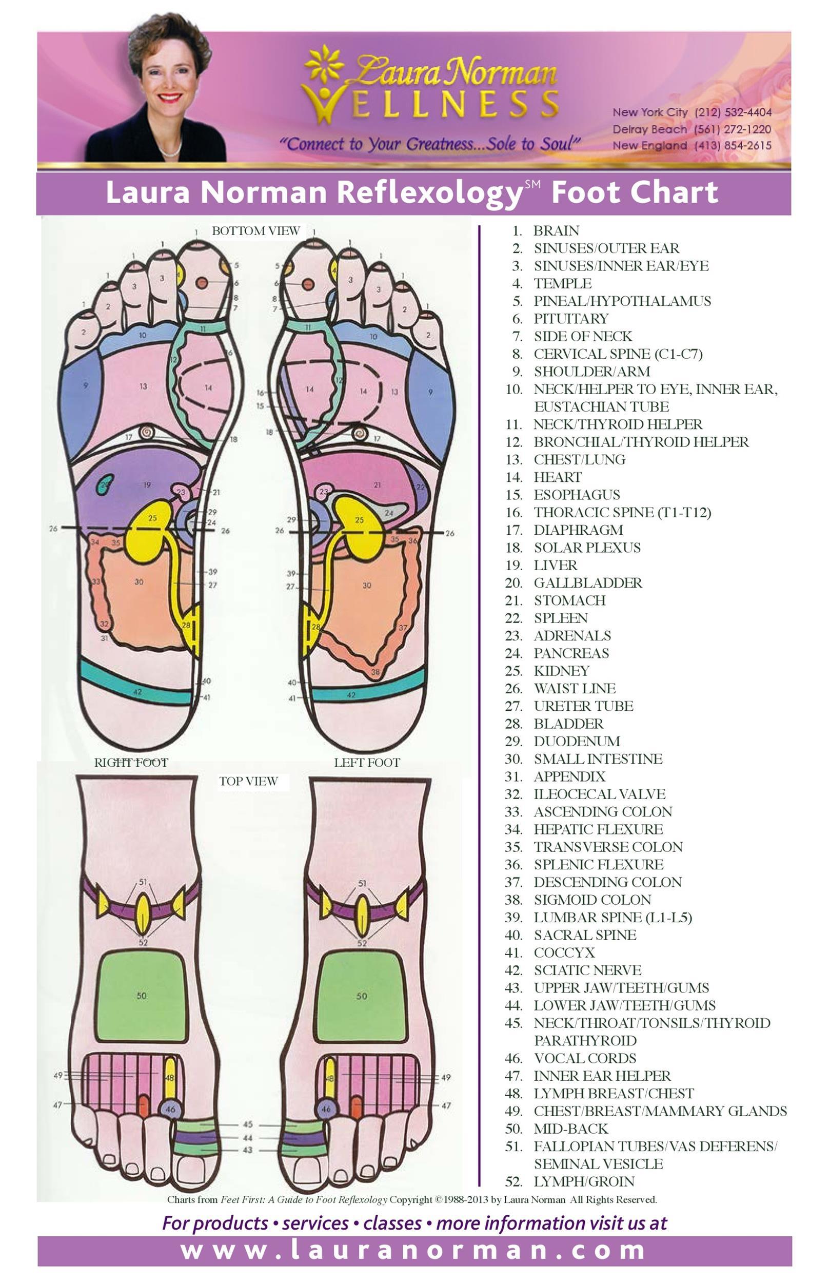 Free foot reflexology chart 19