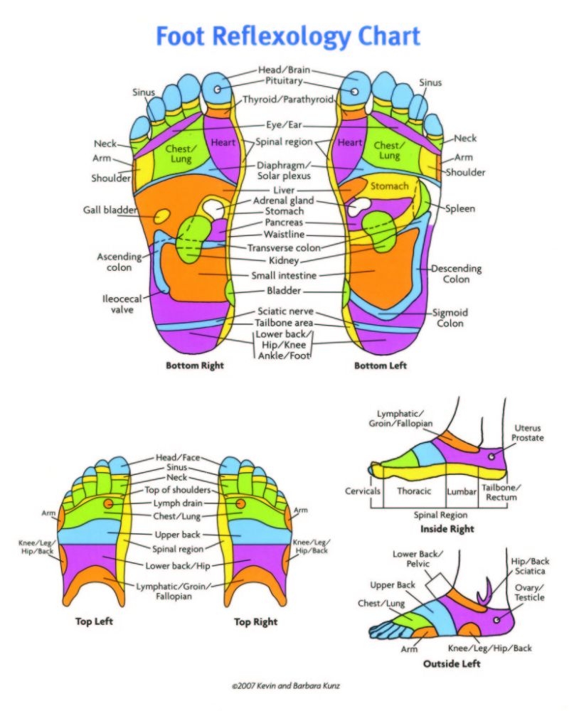 Free foot reflexology chart 21