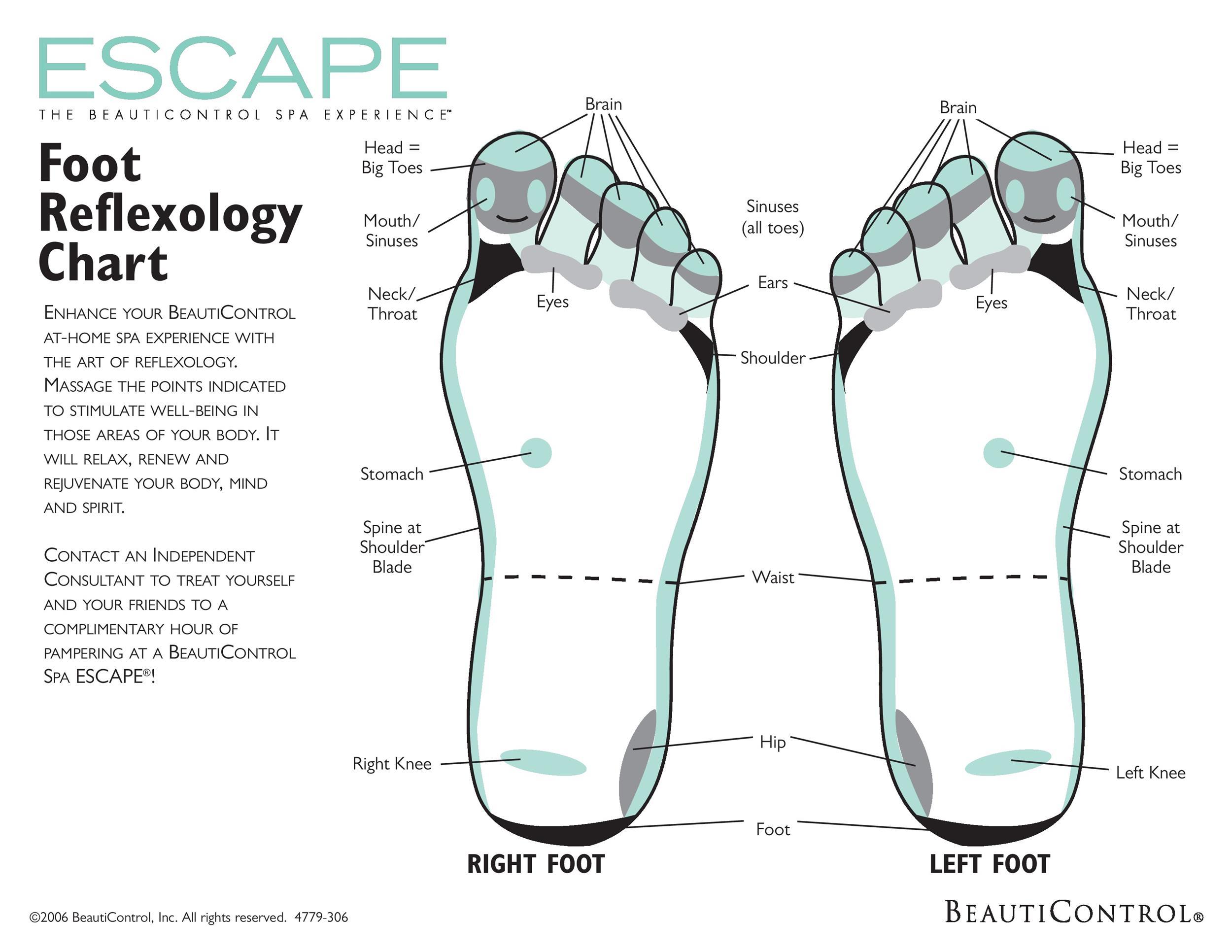 Free foot reflexology chart 25