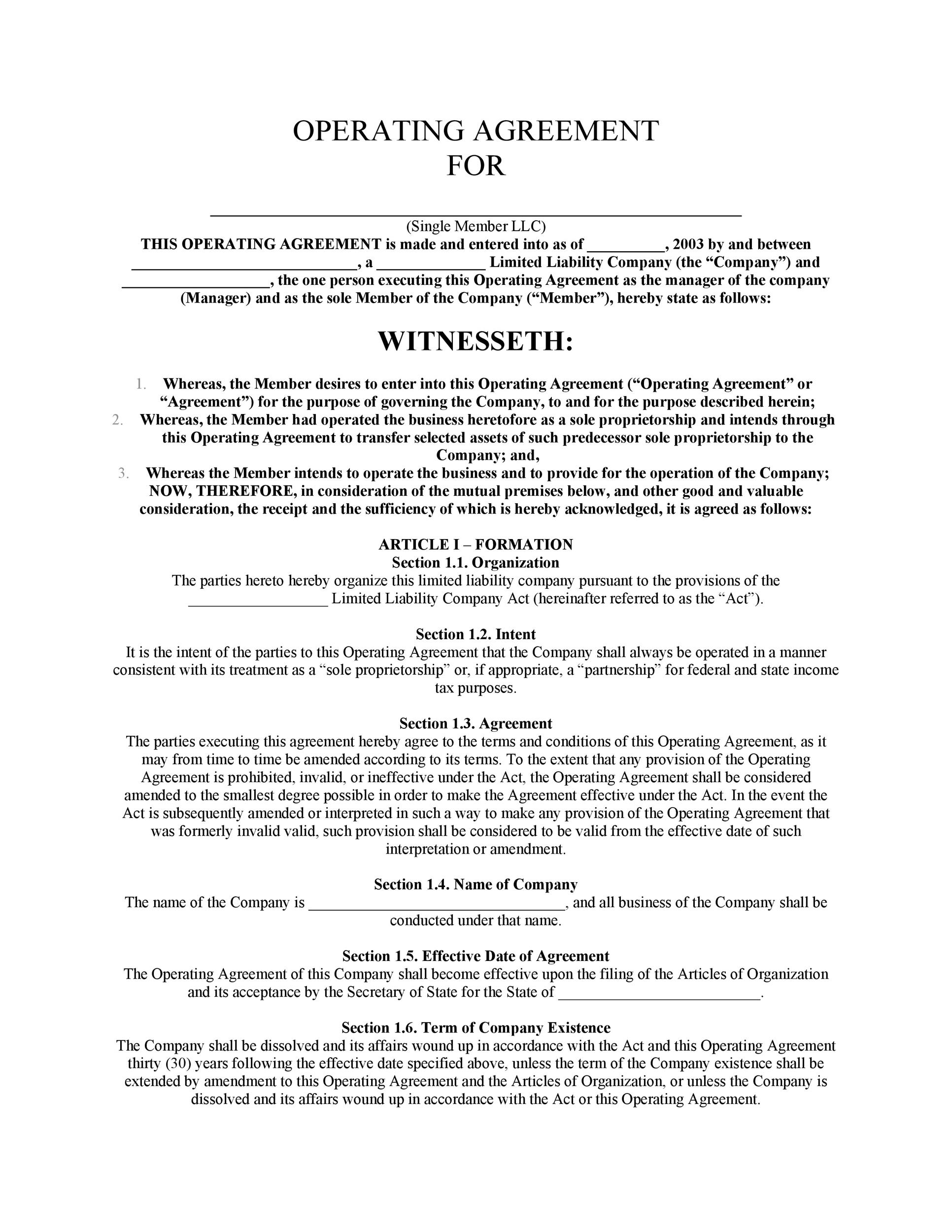 Free llc operating agreement template 13
