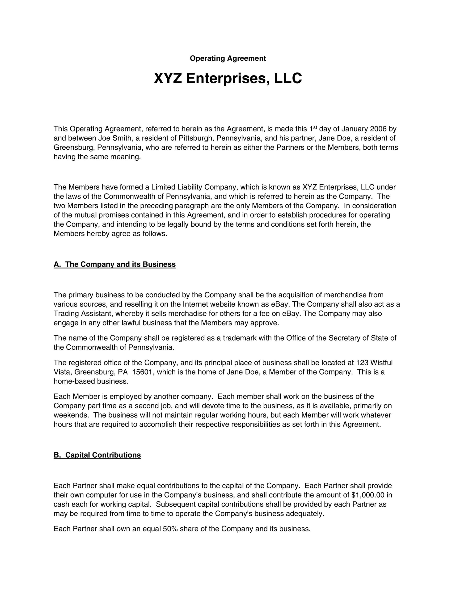 Free llc operating agreement template 15