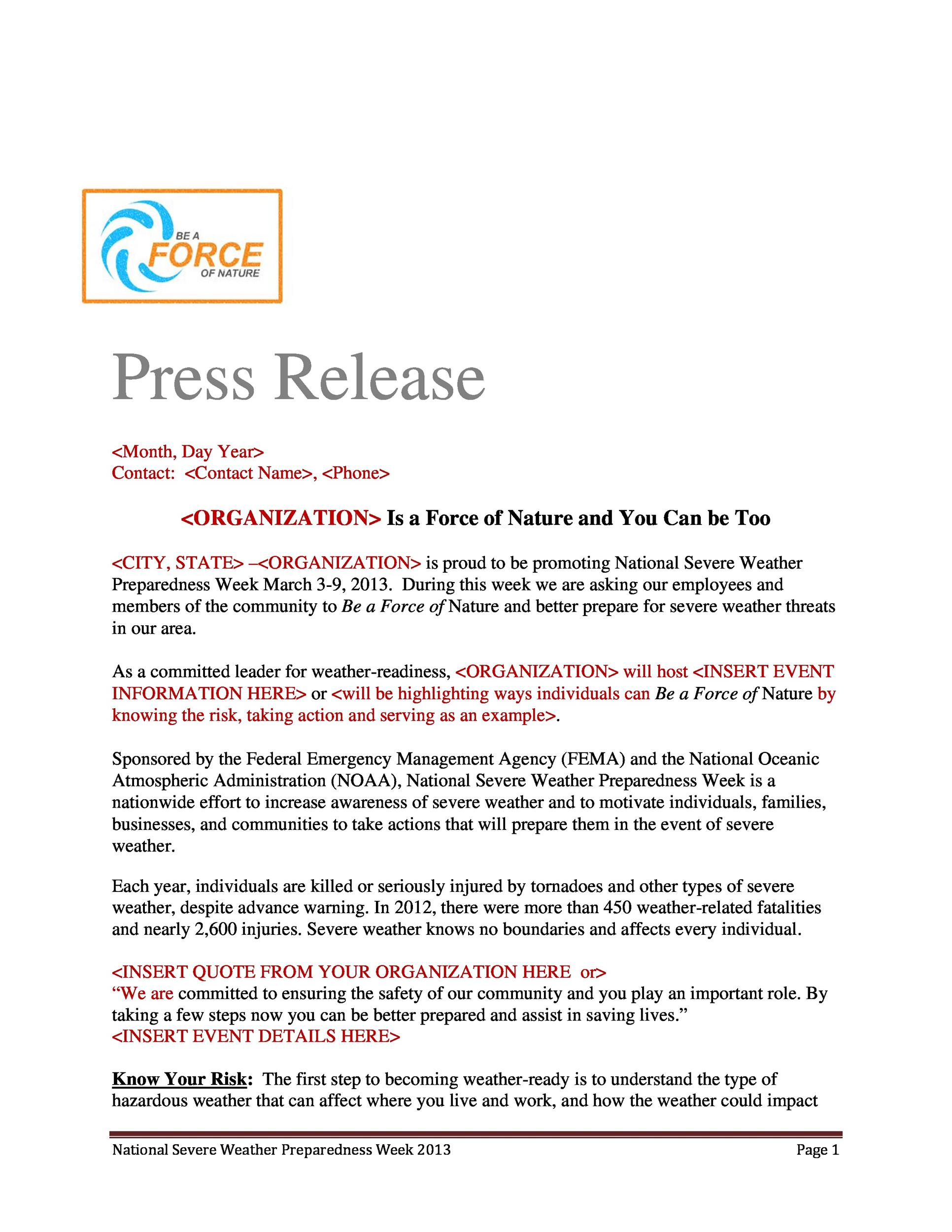Free Press release template 17