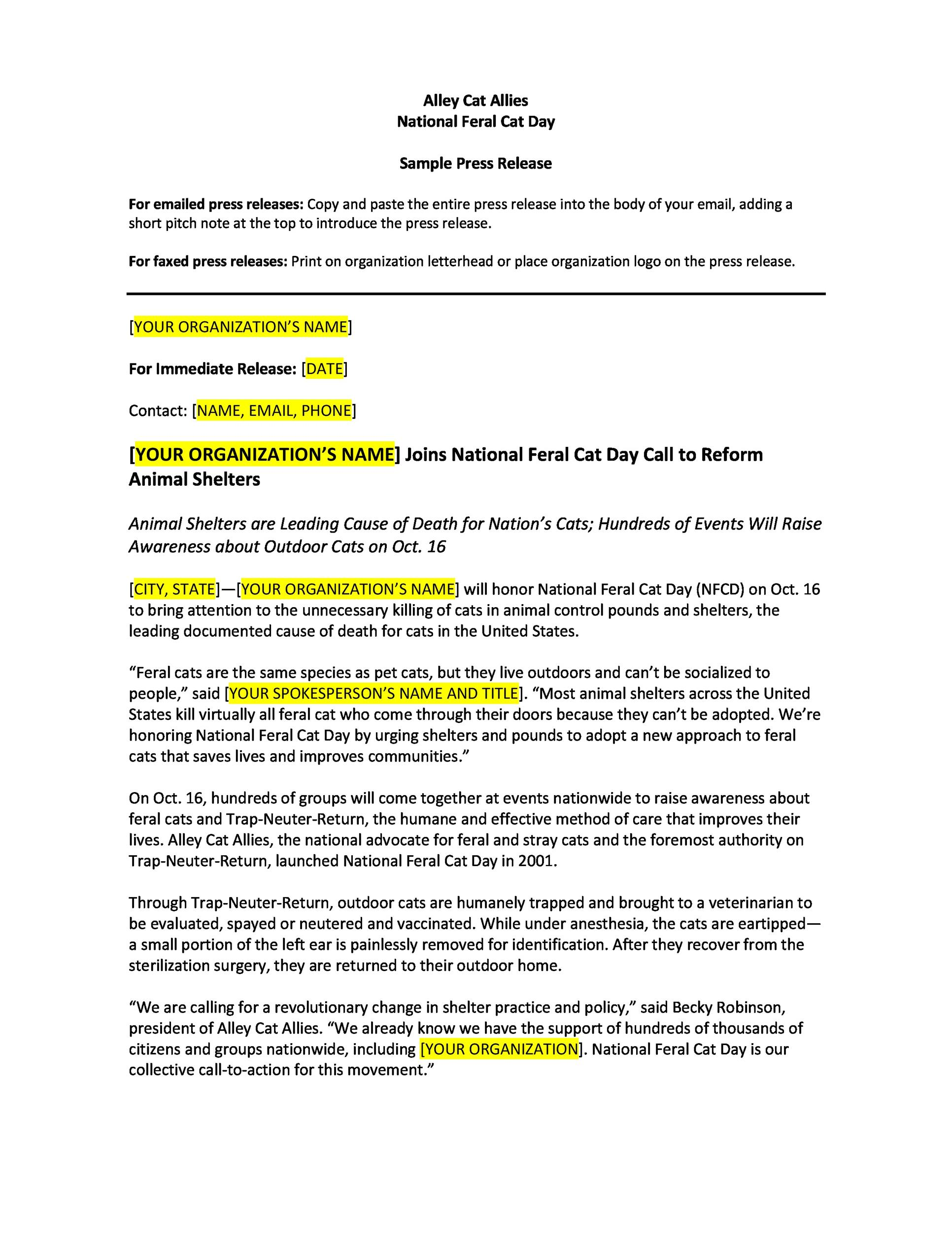 Free Press release template 20