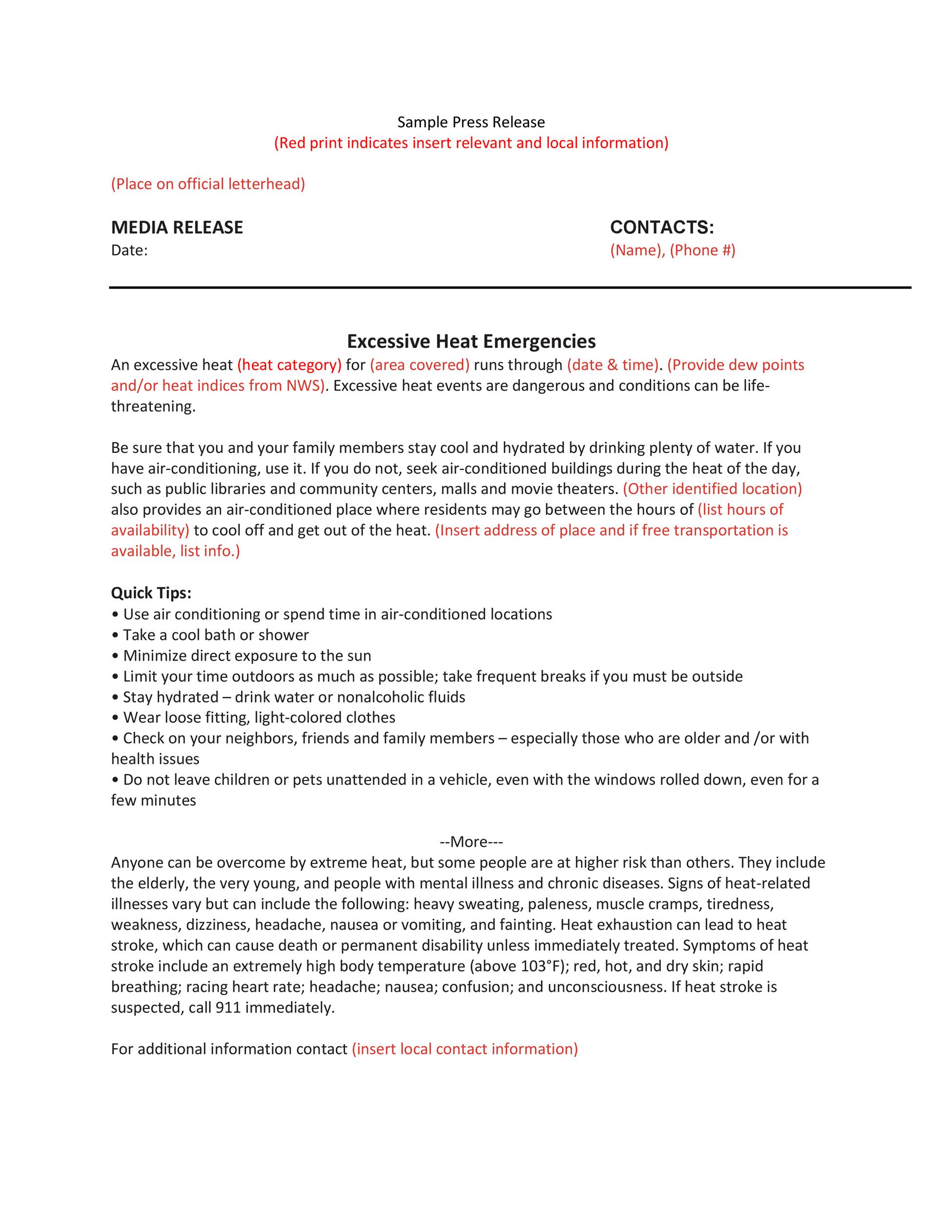 Free Press release template 34