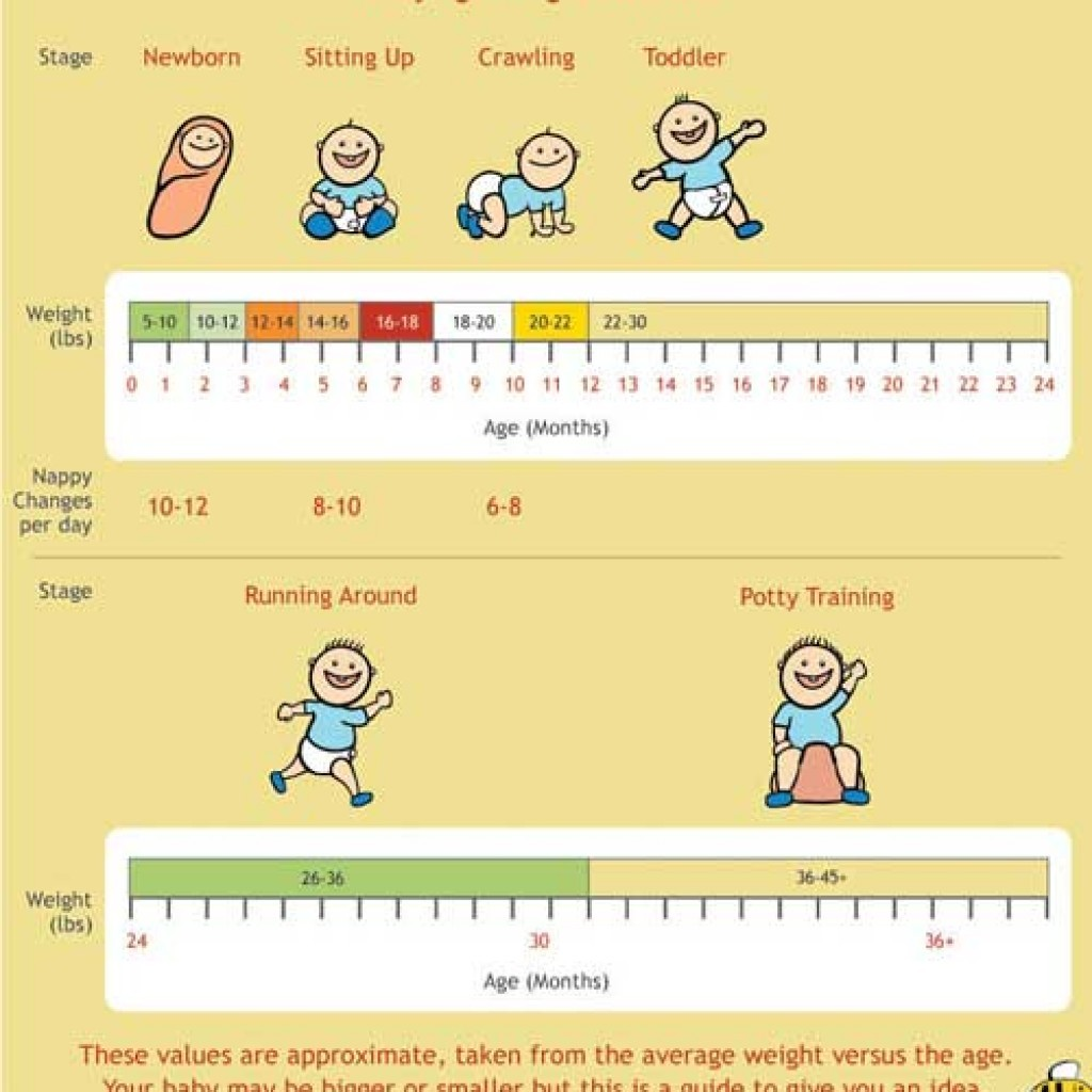 Free Baby Weight Chart 01