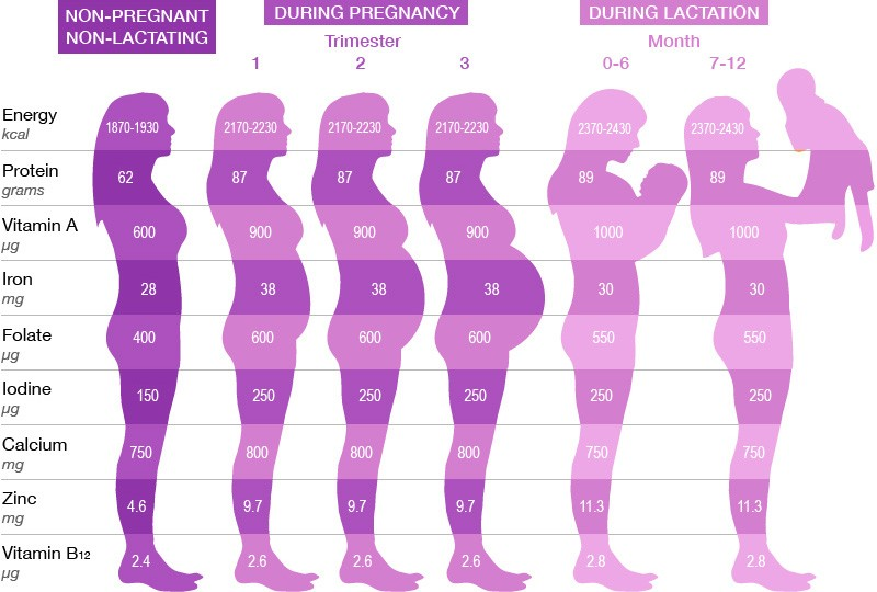 Printable Baby Weight Chart 05