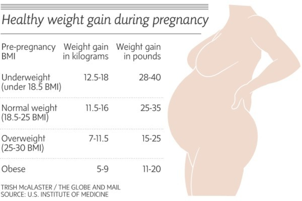 Free Baby Weight Chart 22