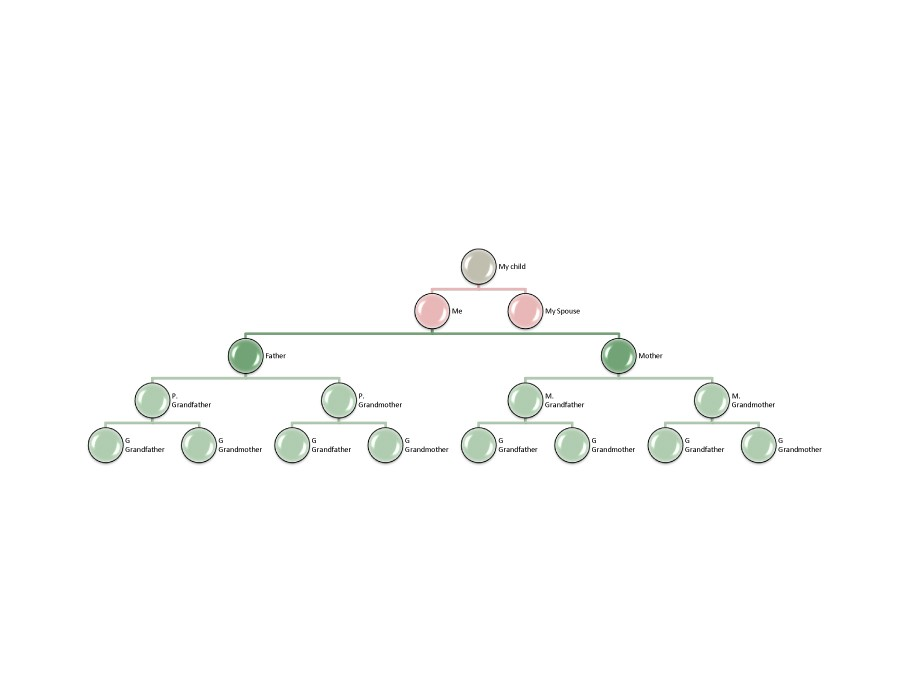 Free family tree template 35