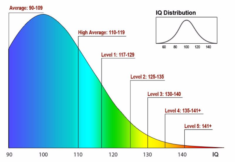 iq chart 12 - screenshot