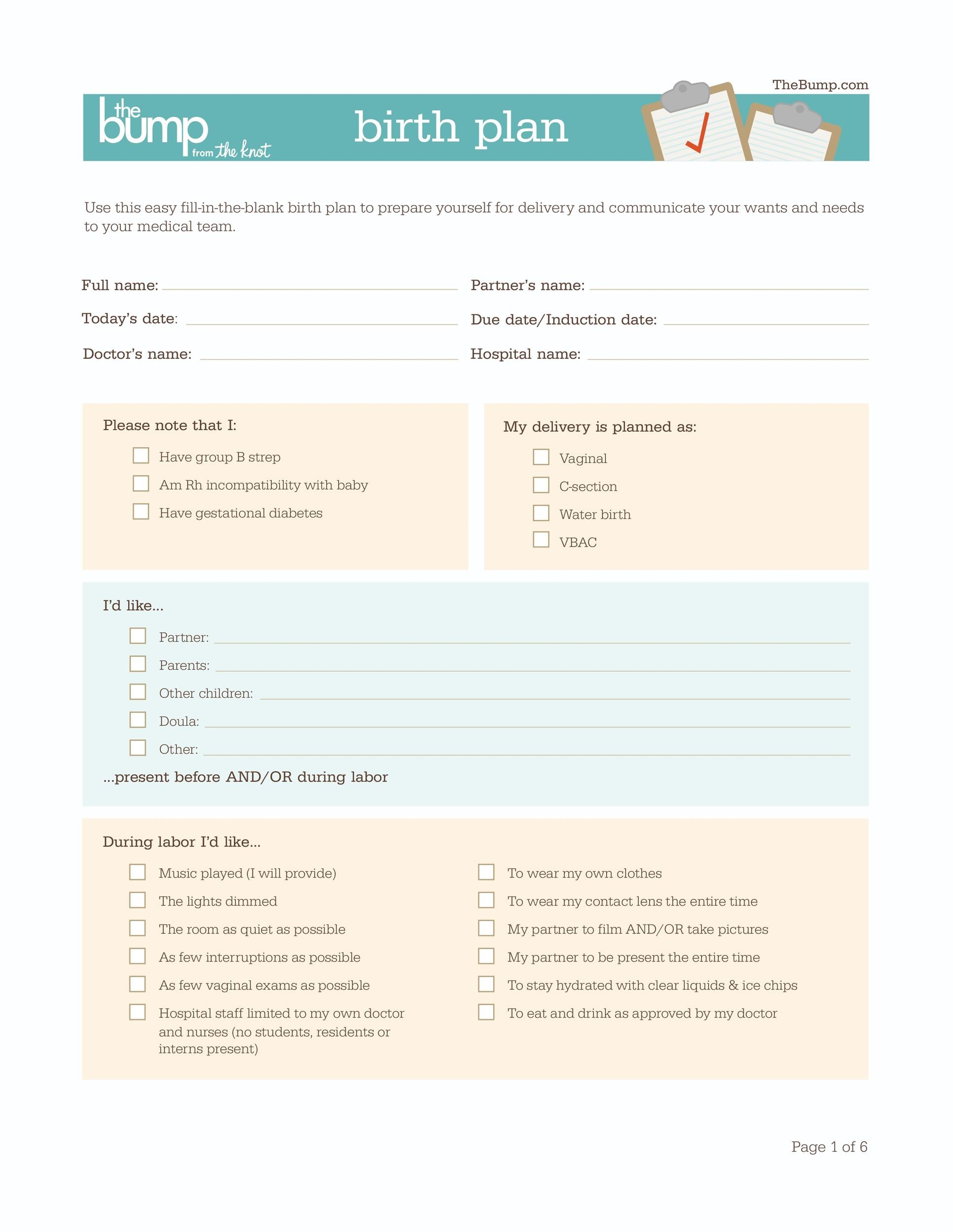 47 printable birth plan templates birth plan checklist for Simple birth plan template
