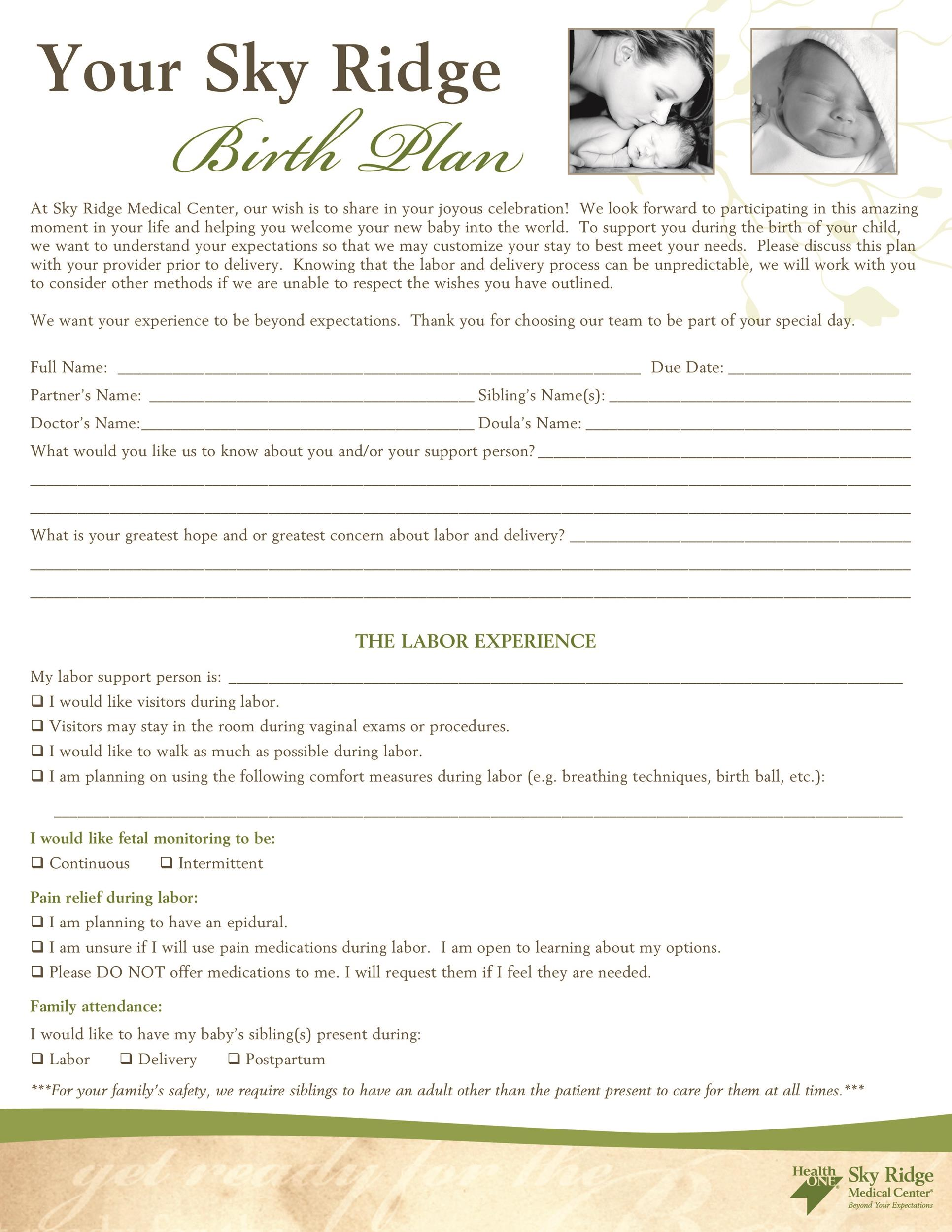 Free Birth Plan Template 09