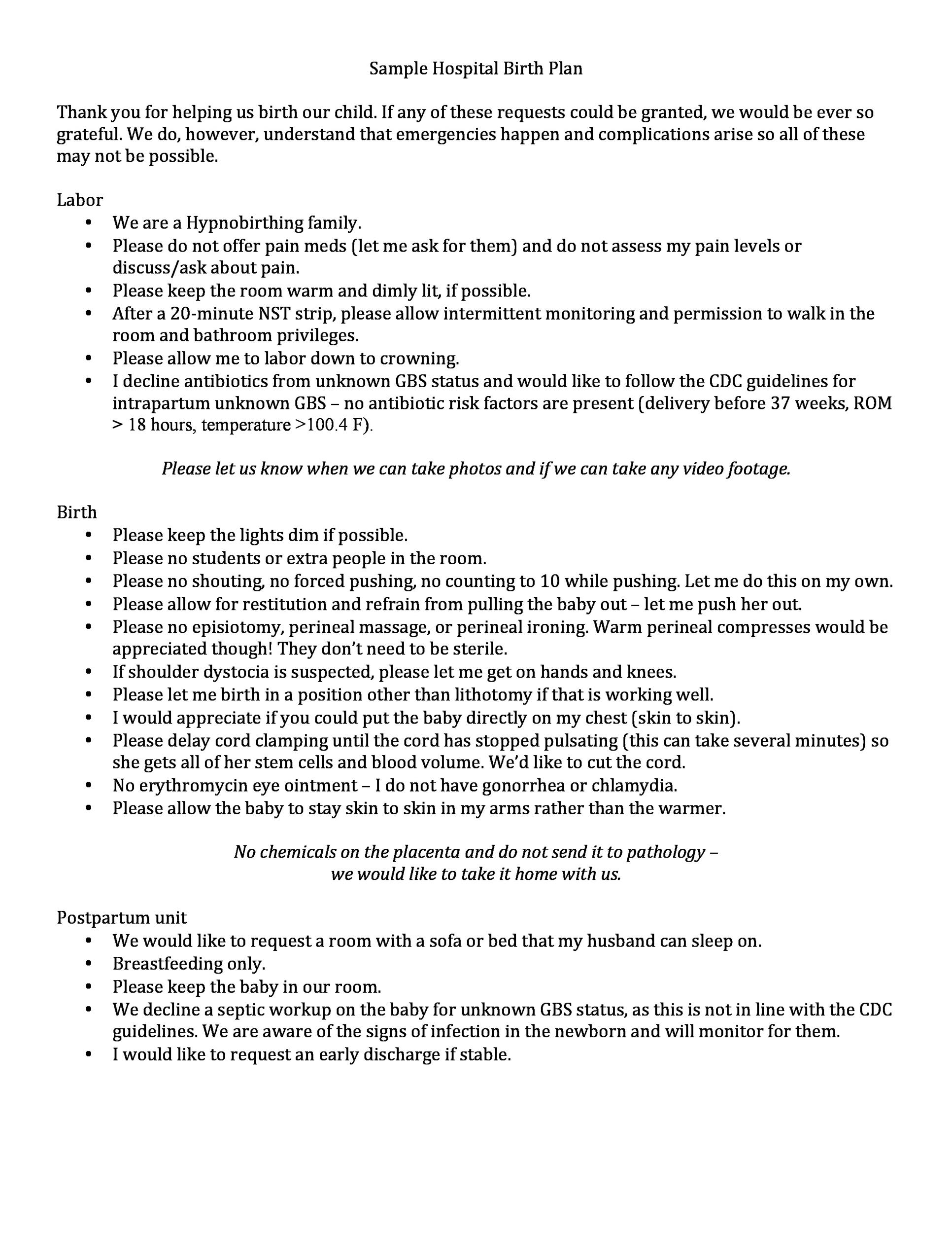 Free Birth Plan Template 12