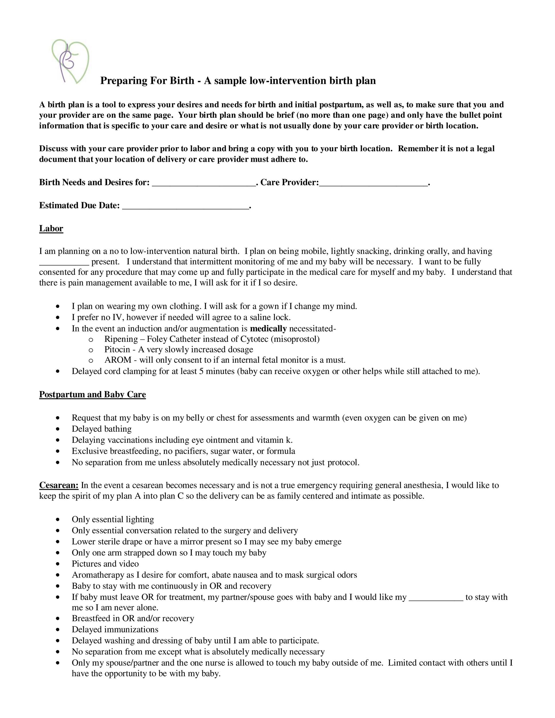 Free Birth Plan Template 15