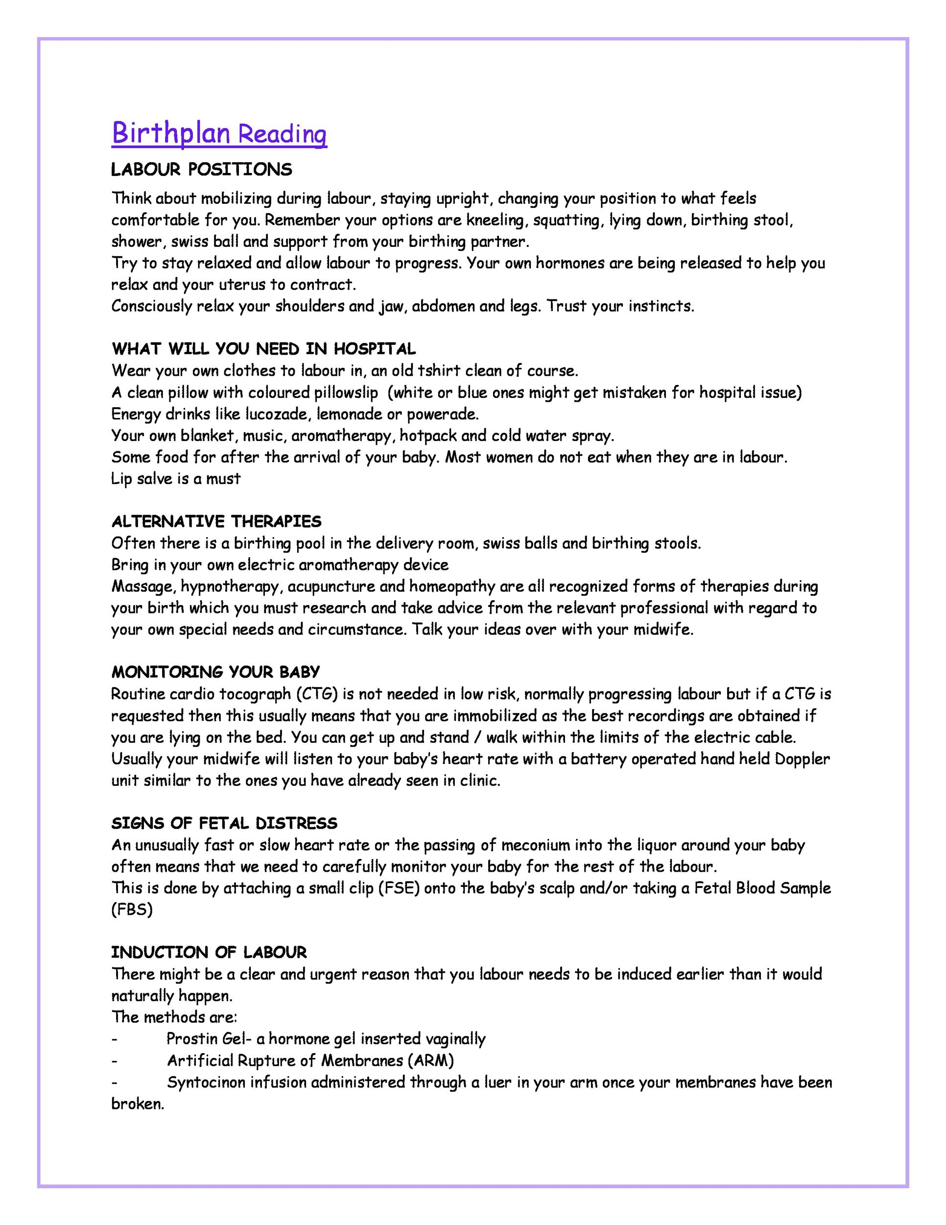 Free Birth Plan Template 28