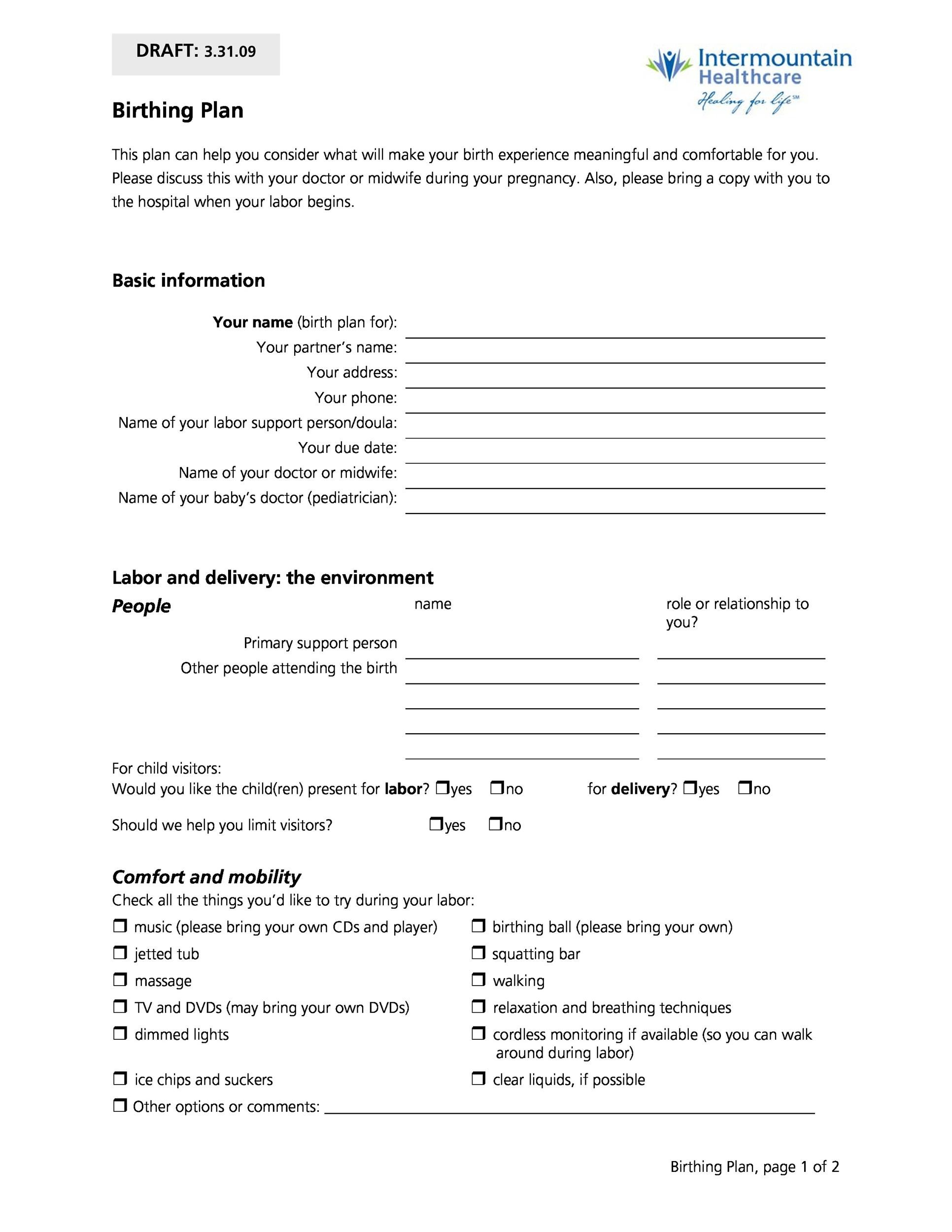 Free Birth Plan Template 38